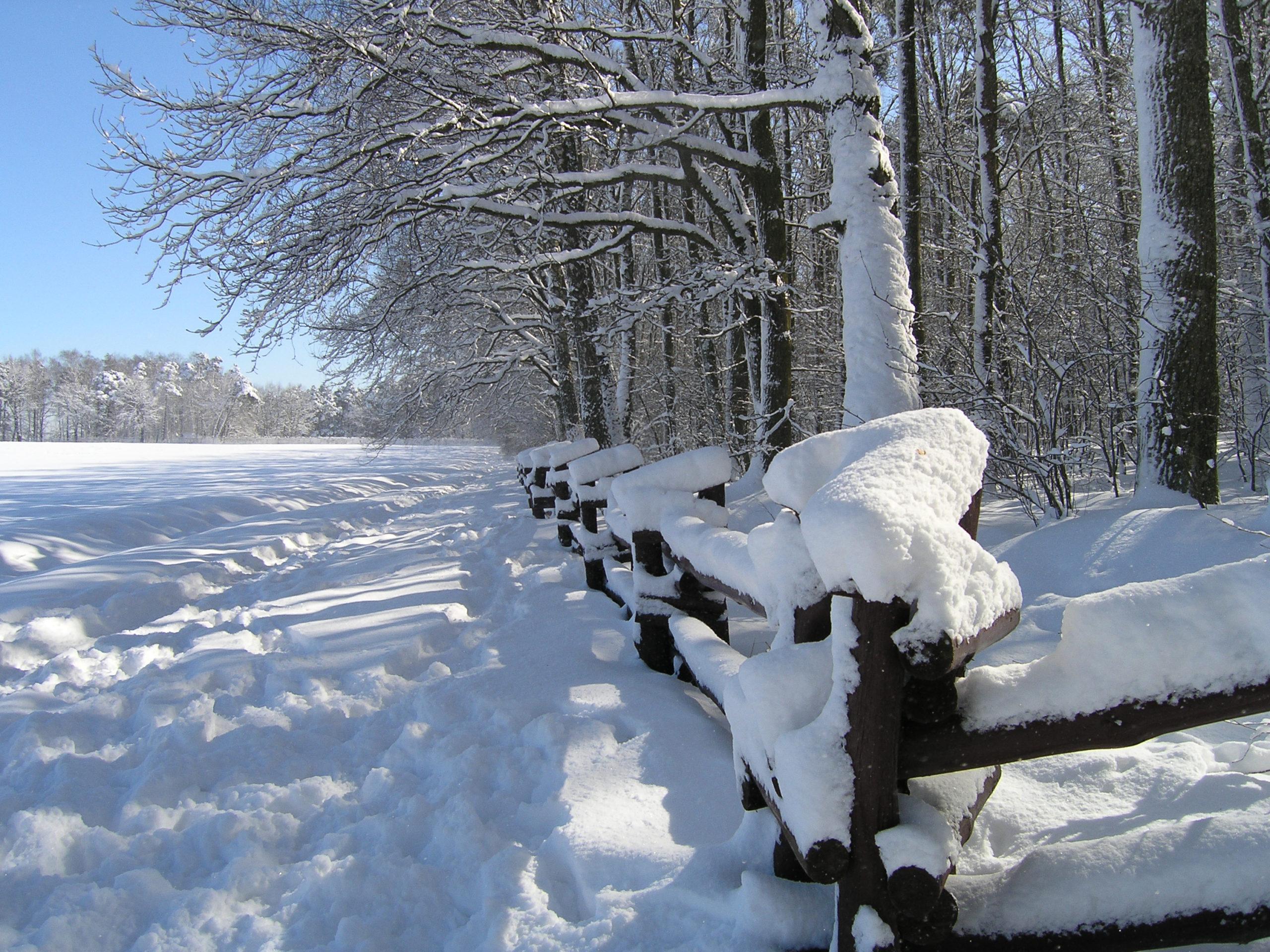 Ogrodzenie pokryte śniegiem