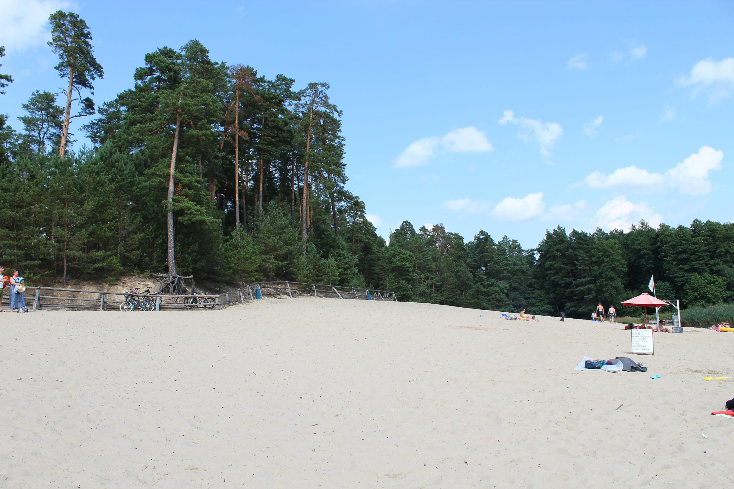 Plaża i las