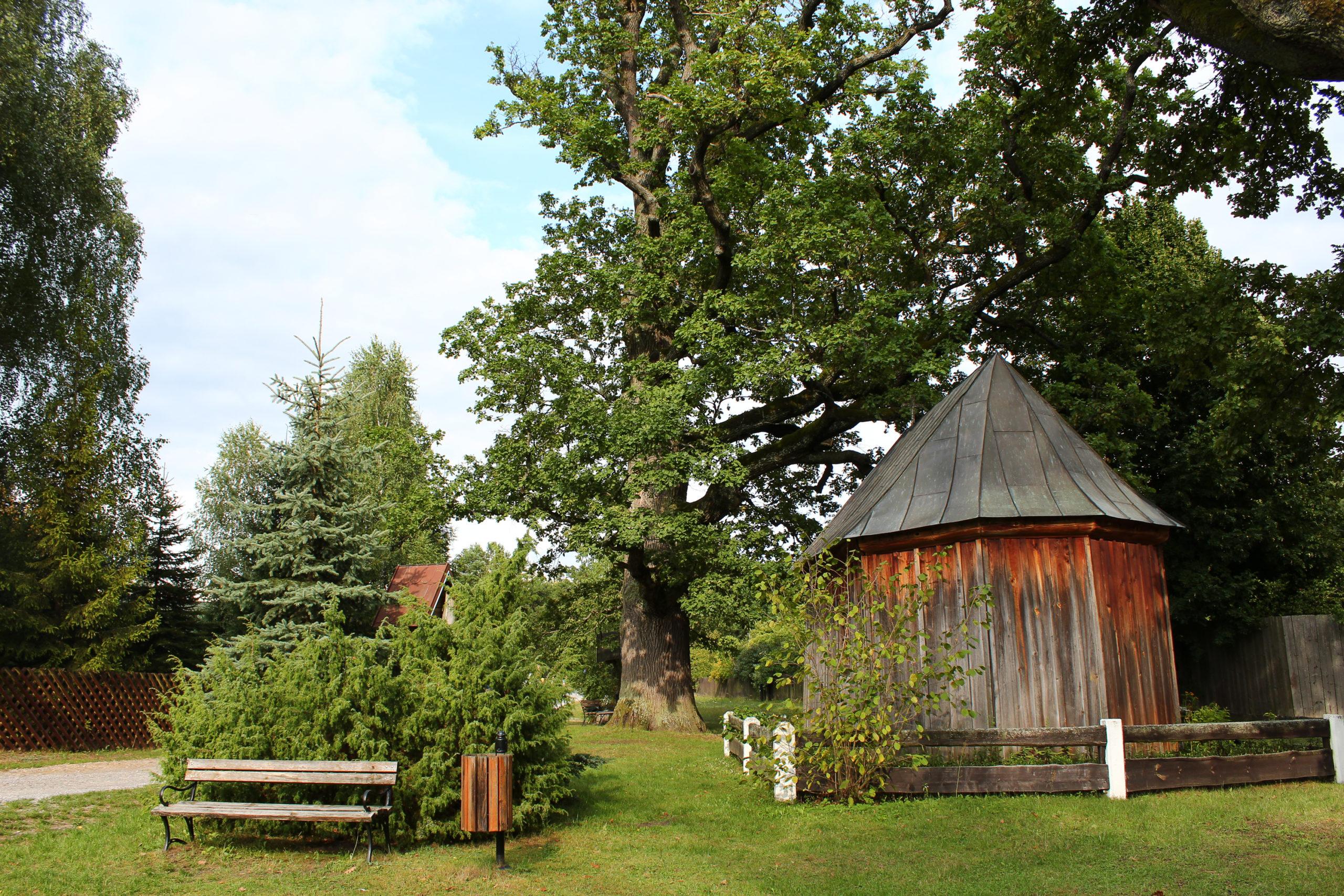 Drewniany budynek i drzewo