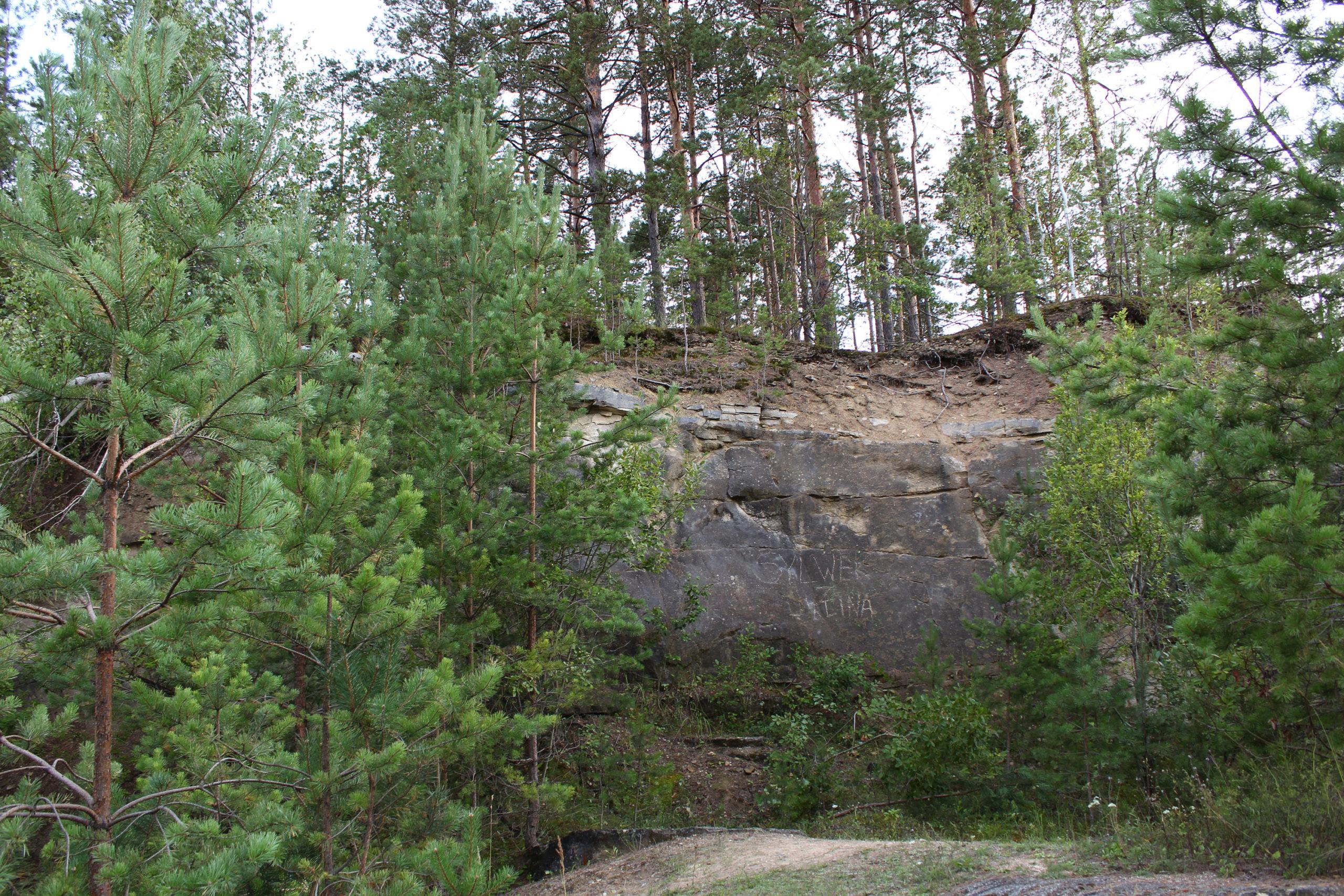Klif w lesie