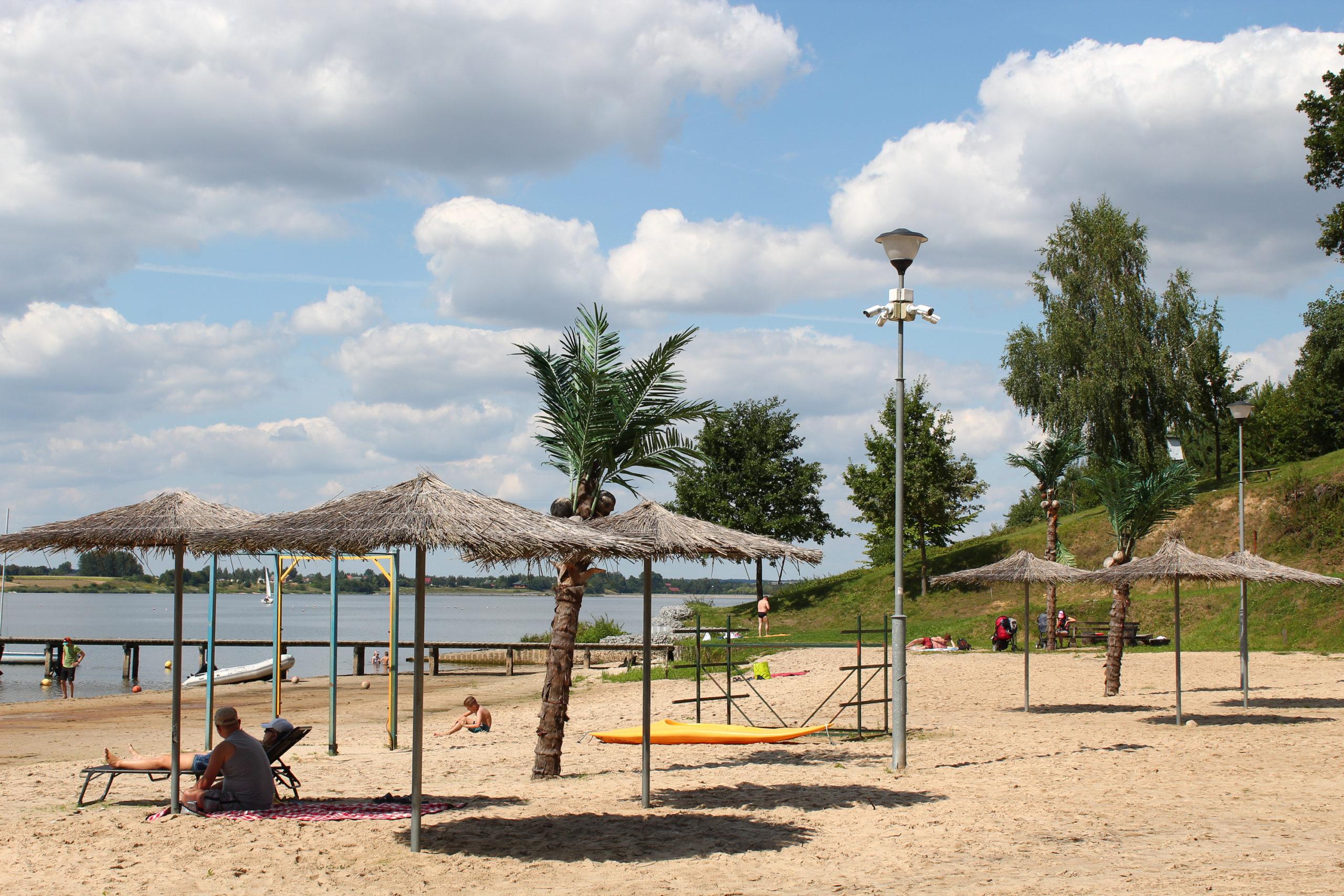 Plaża z parasolami i palmą