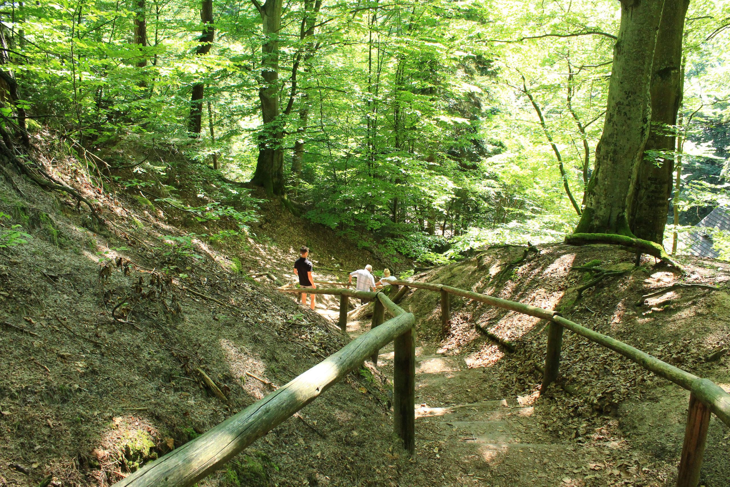 Drewniane barierki szlaku