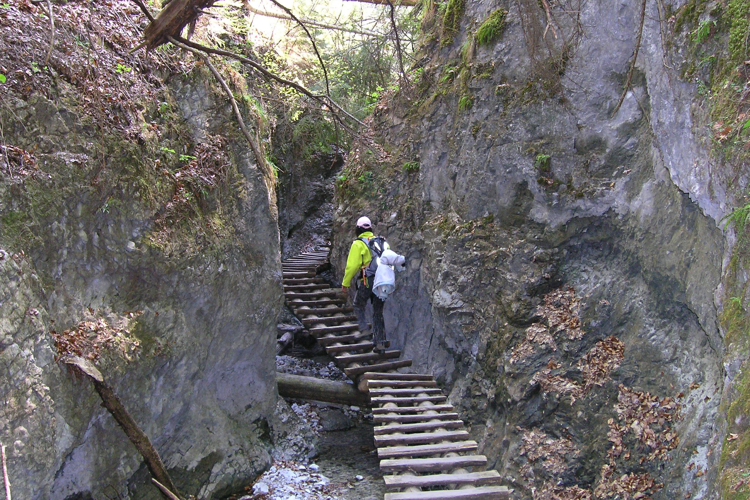 Drewniany szlak wśród skał