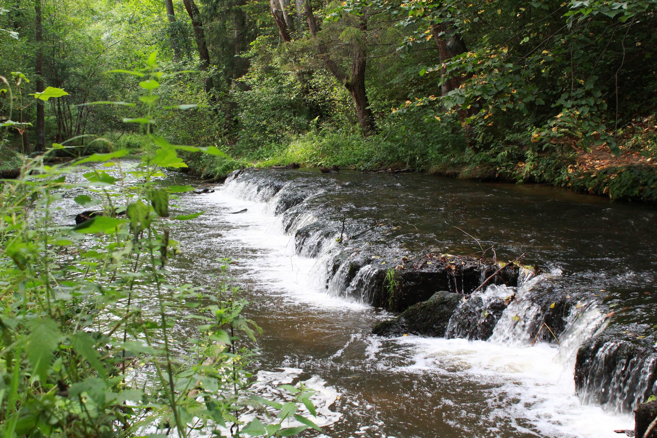 uskok na rzece