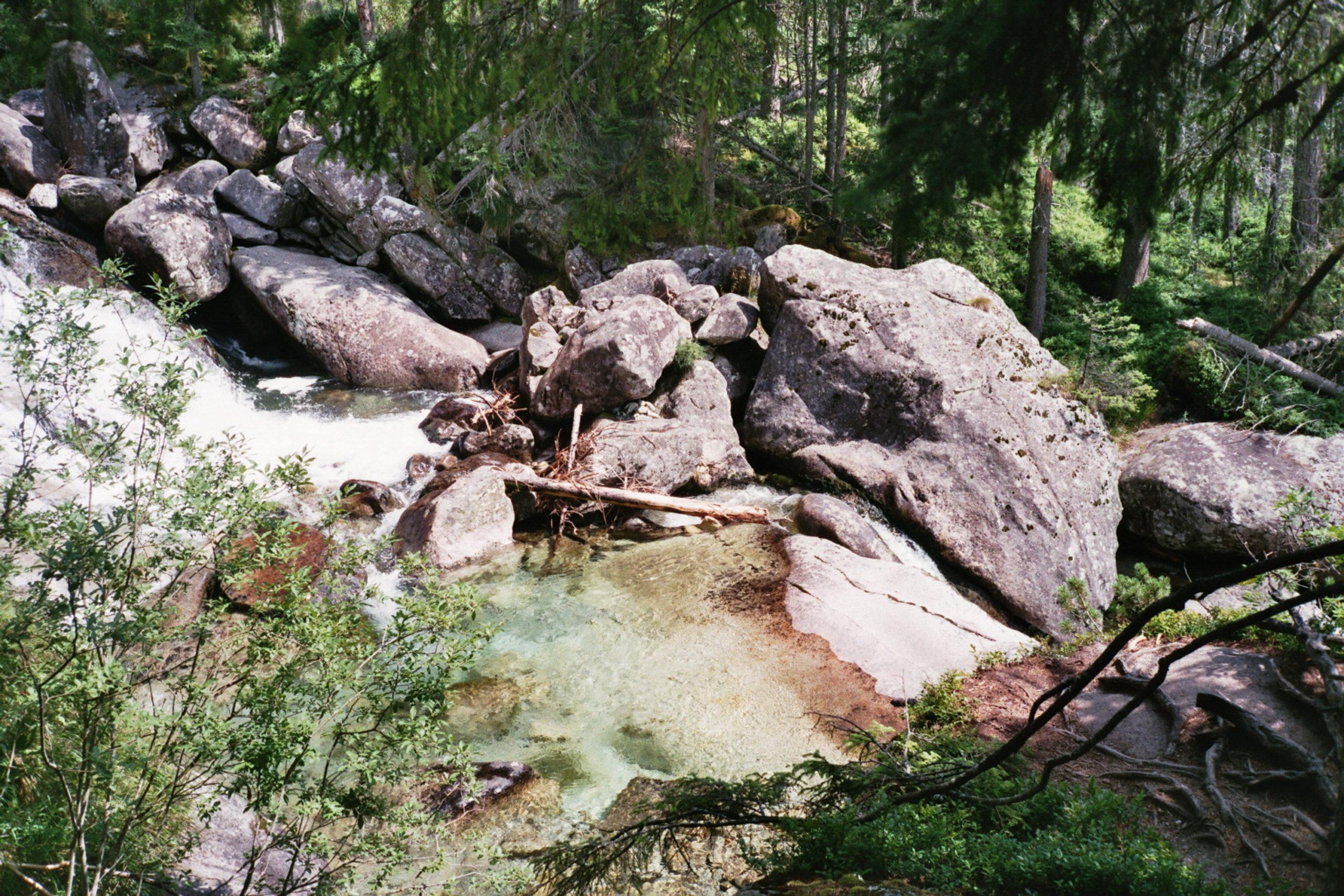 widok na potok w tatrach