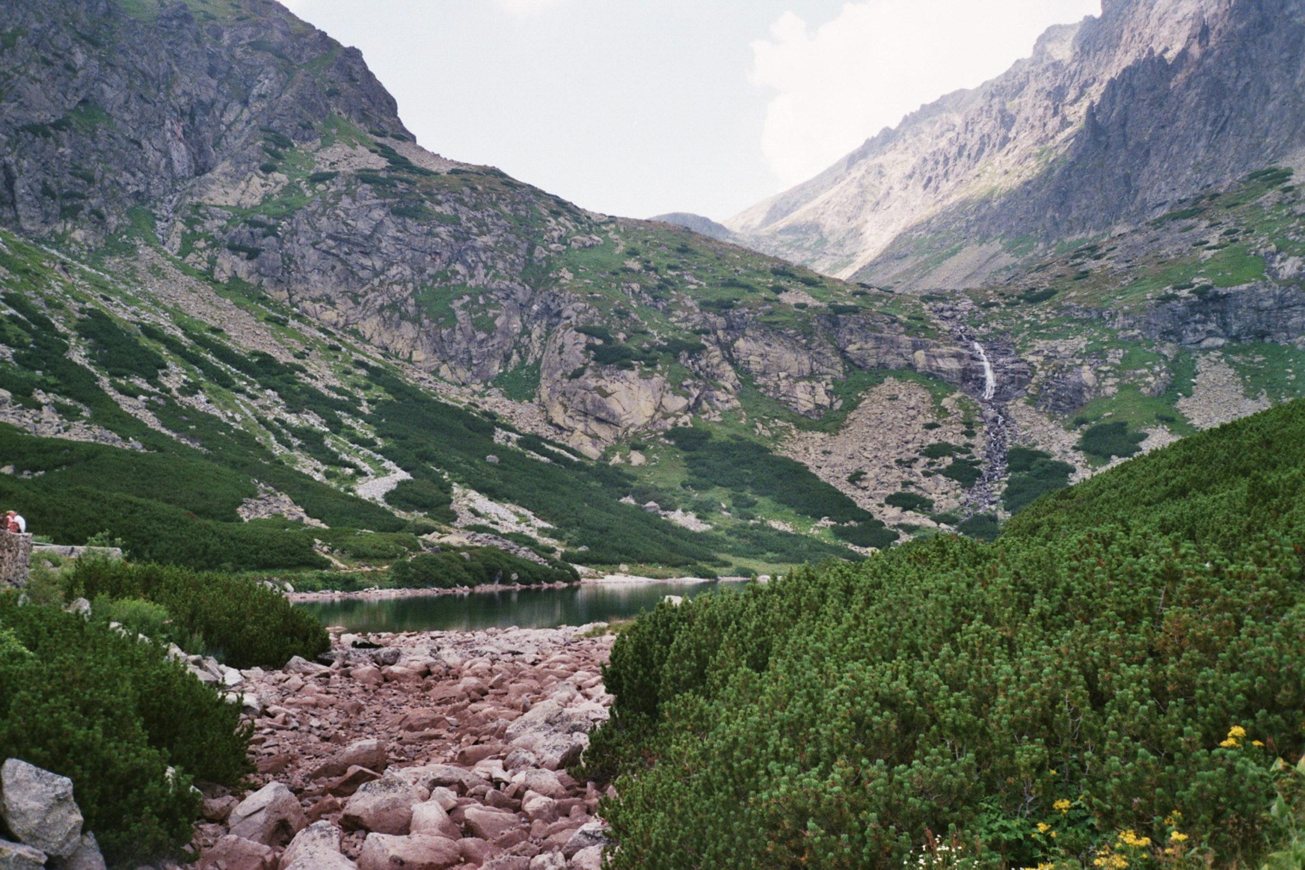 widok na góry i potok