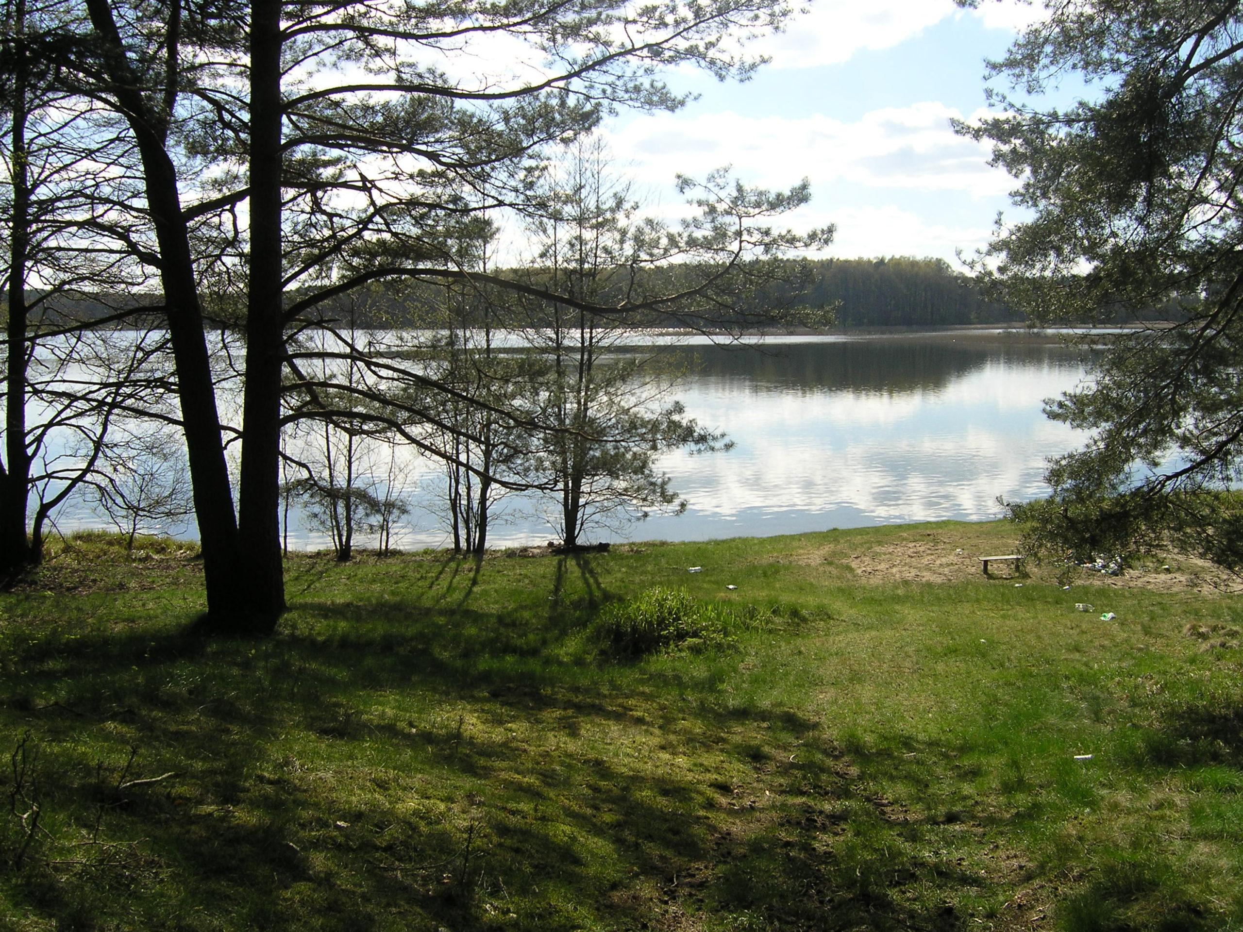 Widok na brzeg jeziora