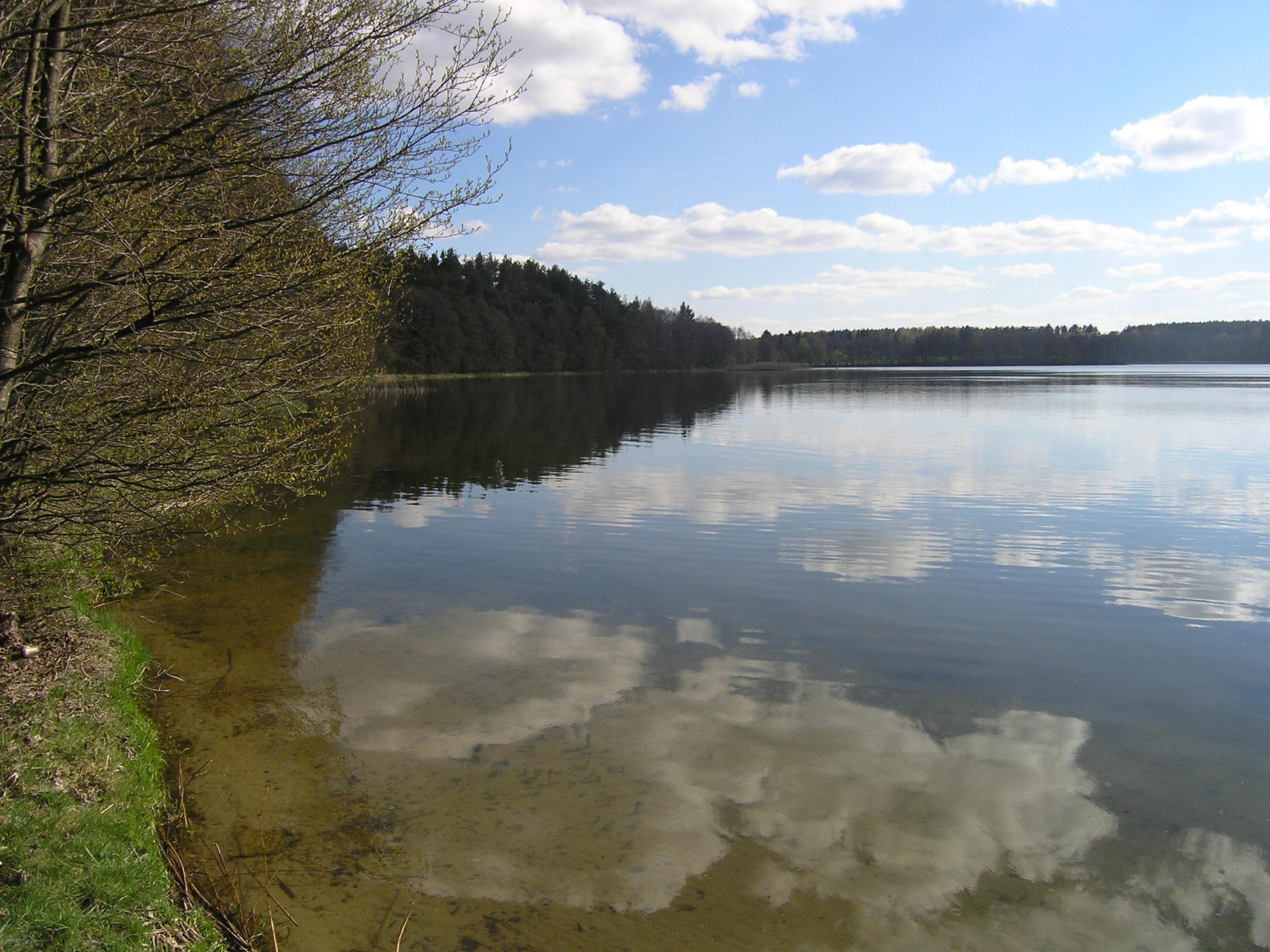 Brzeg jeziora