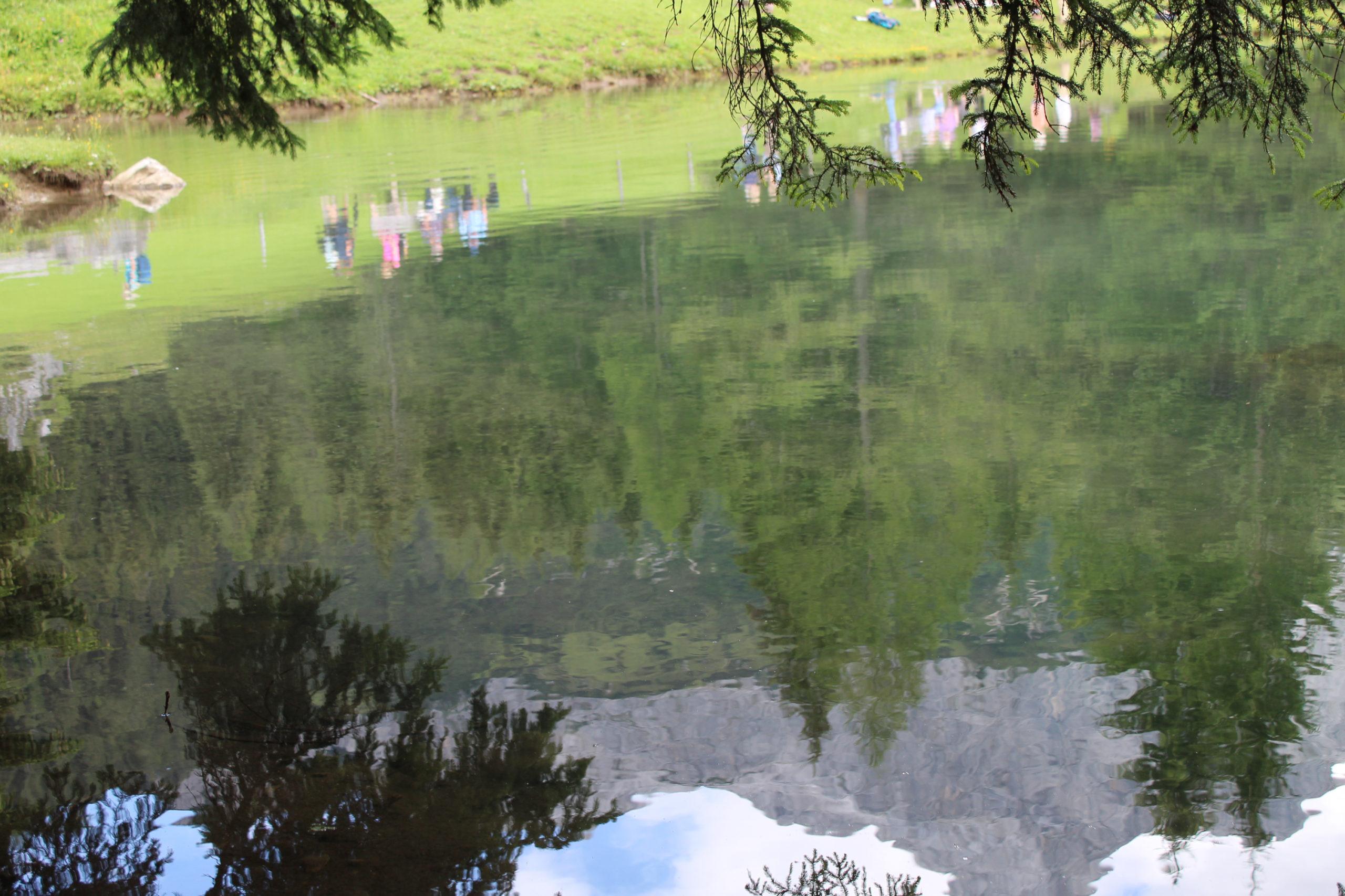 Góry i las odbite w tafli jeziora