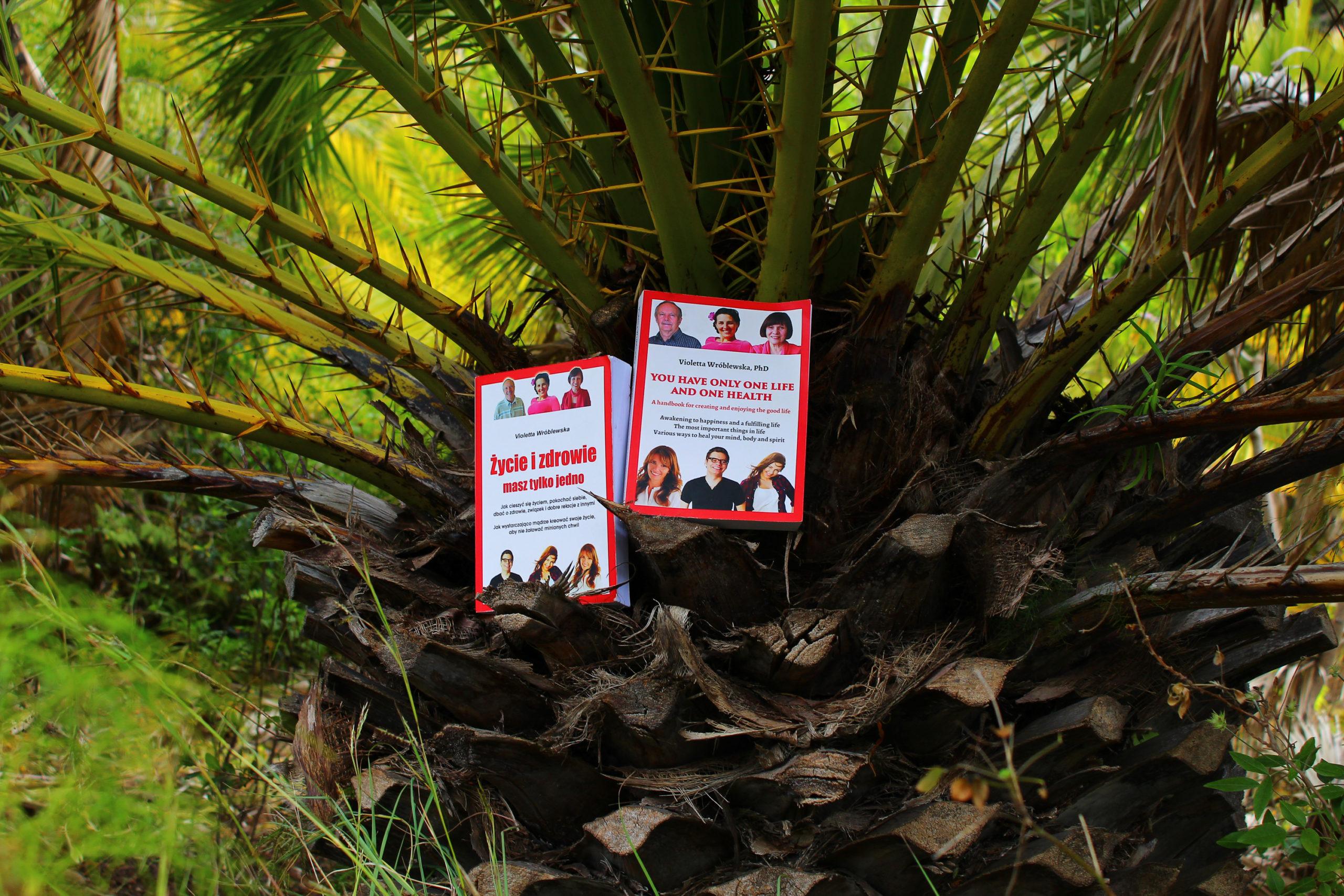 Książki na palmie