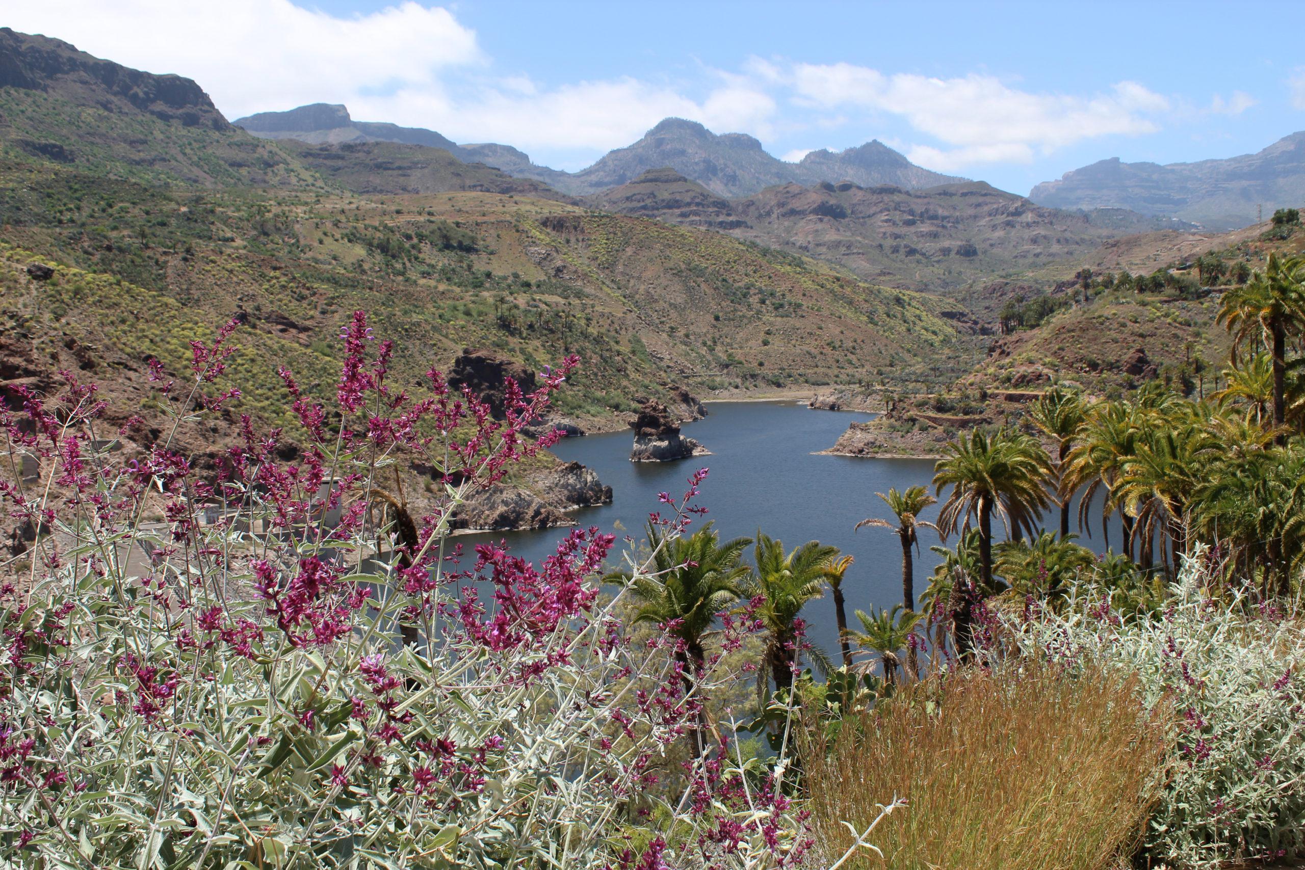 Panorama na wodę i góry
