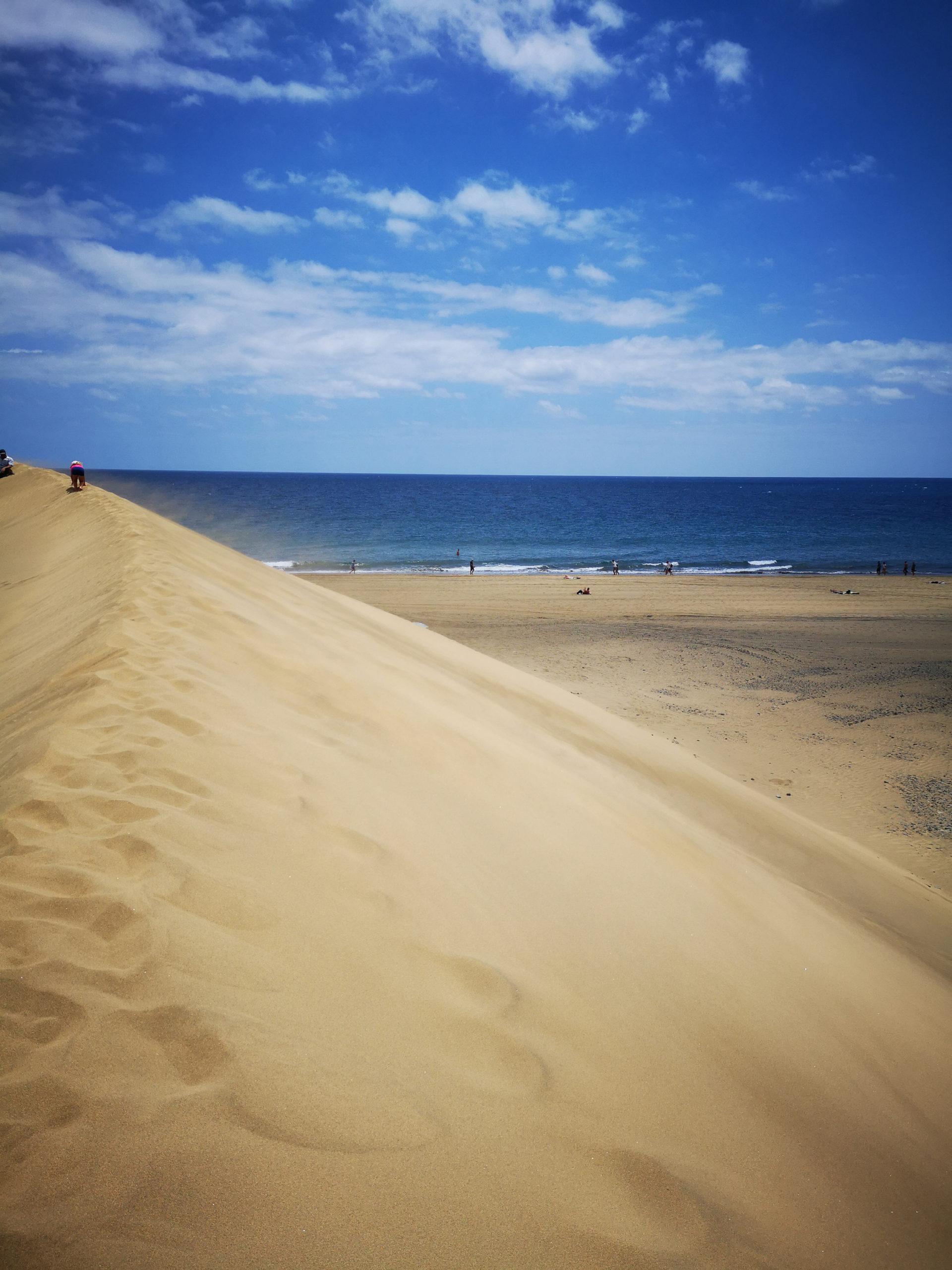 Wydma i widok na Ocean