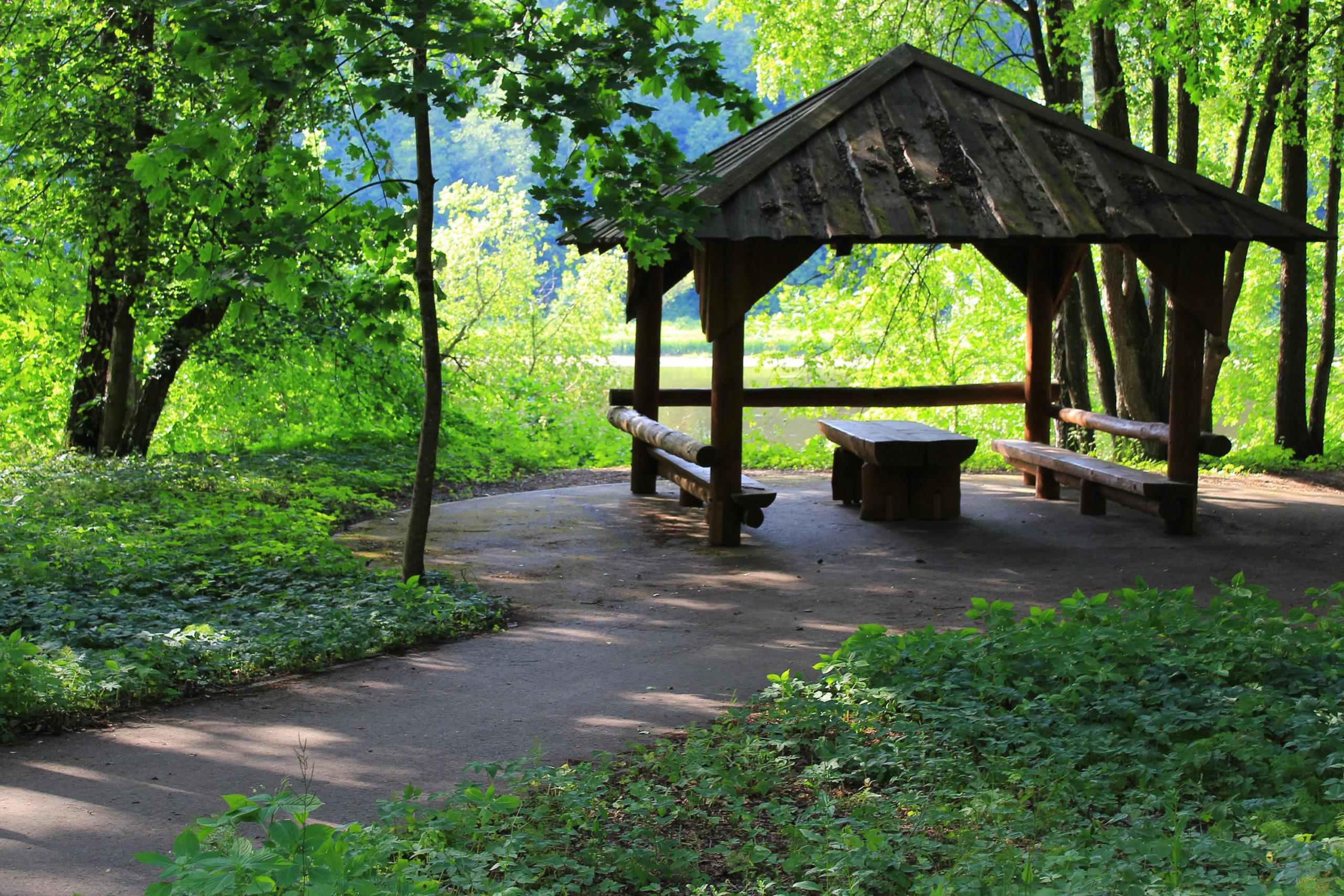 Altana w lesie