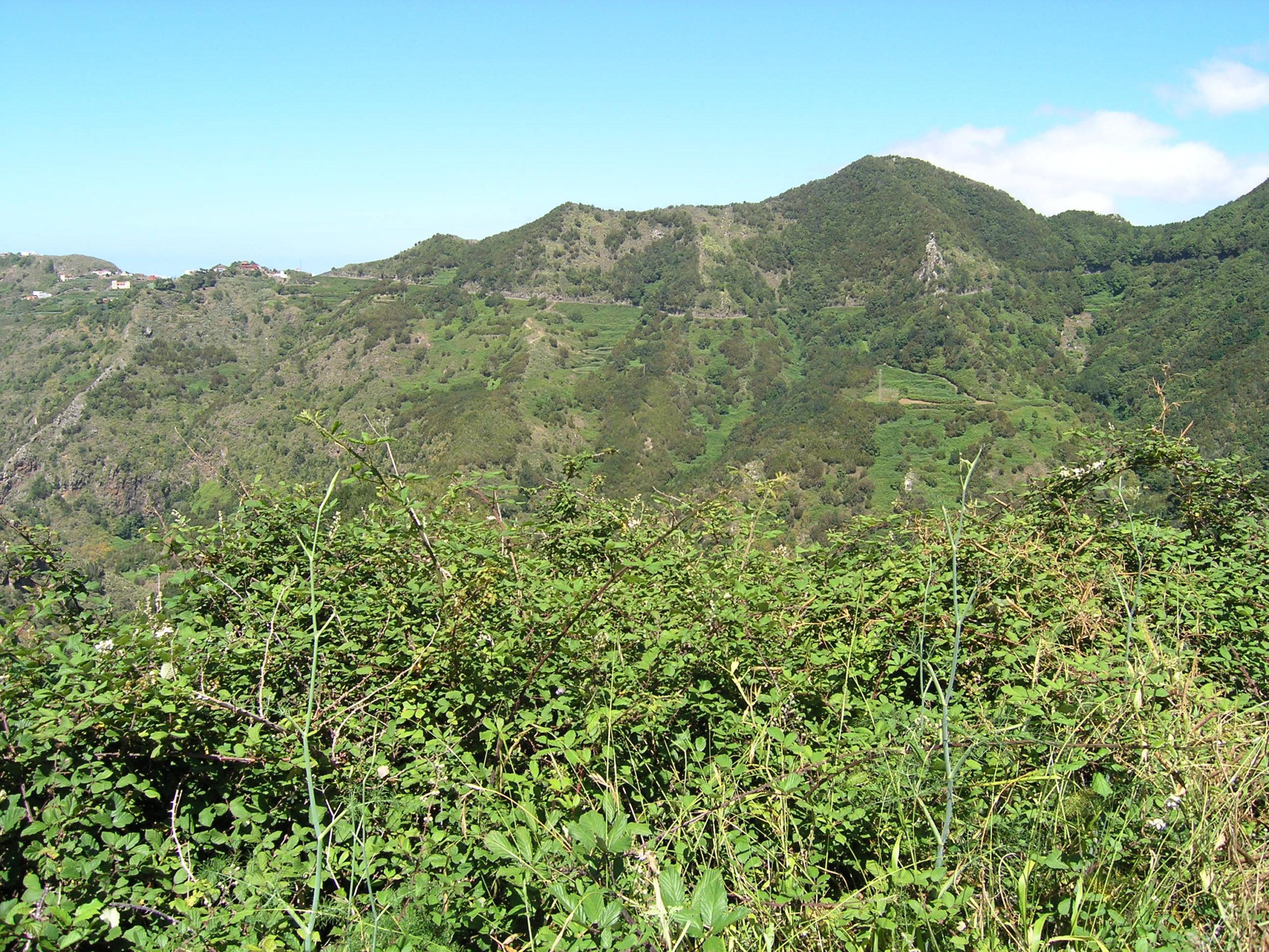 panorama na gory naga