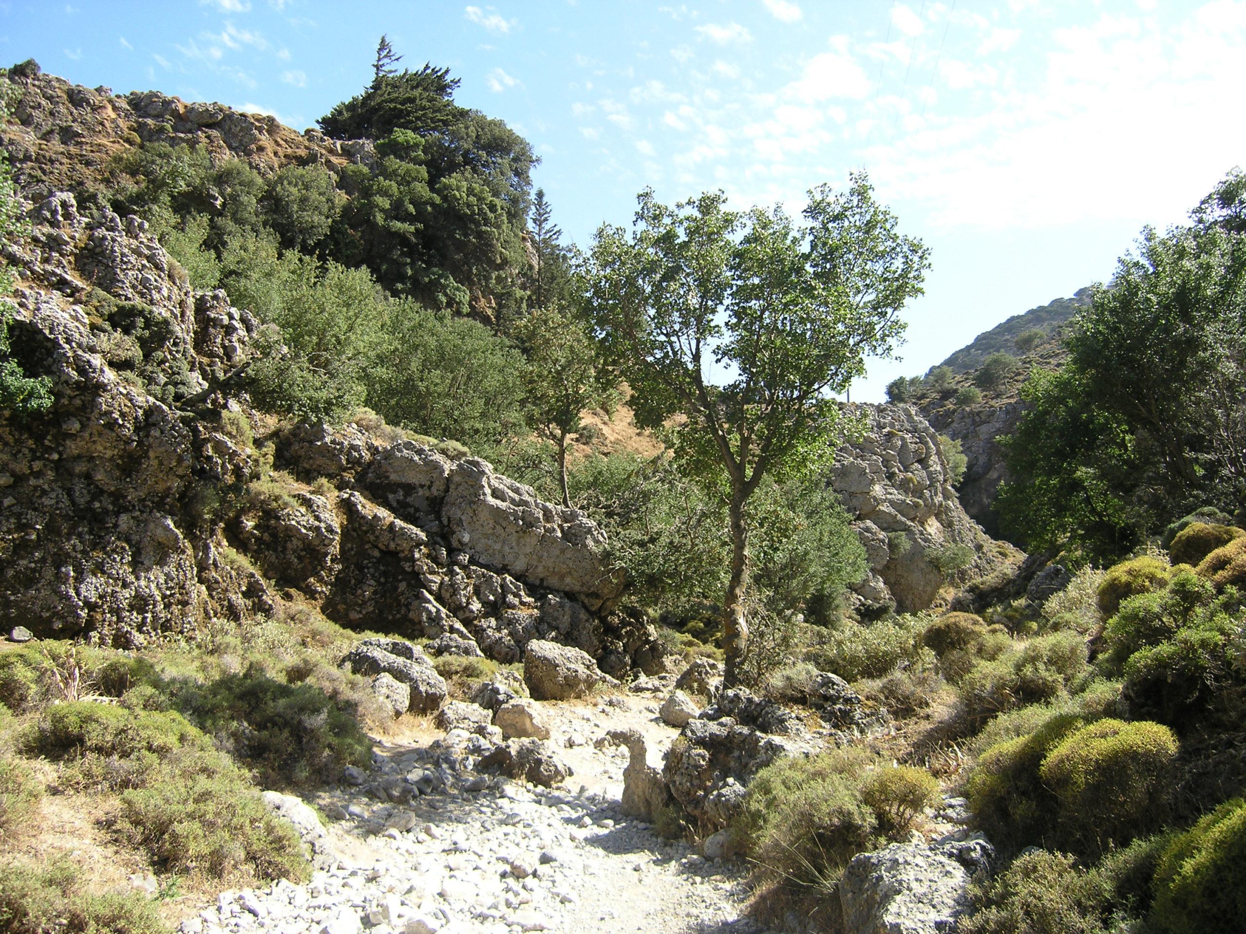 Widok na ścieżkę wśród skał