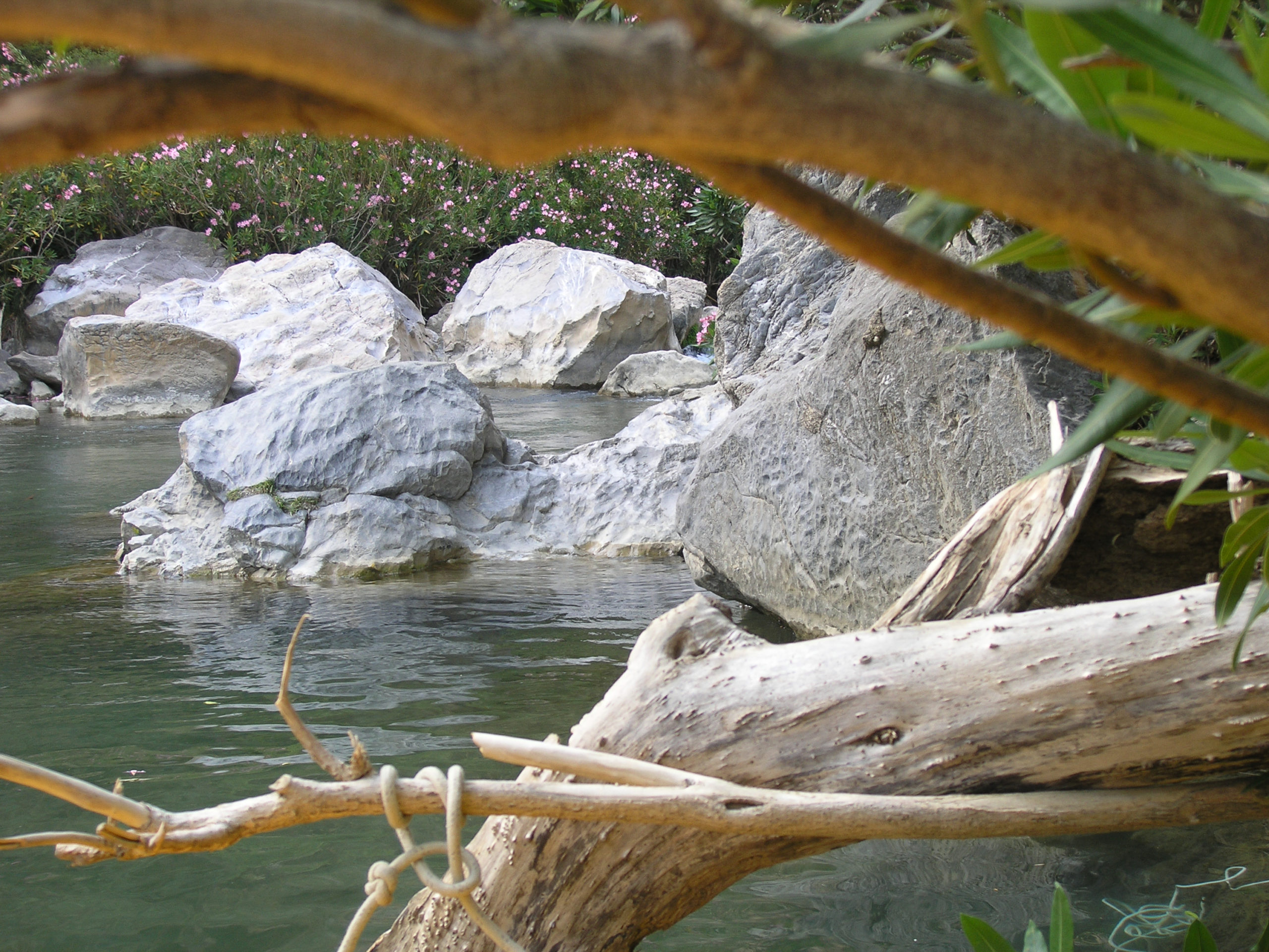 skały w rzece