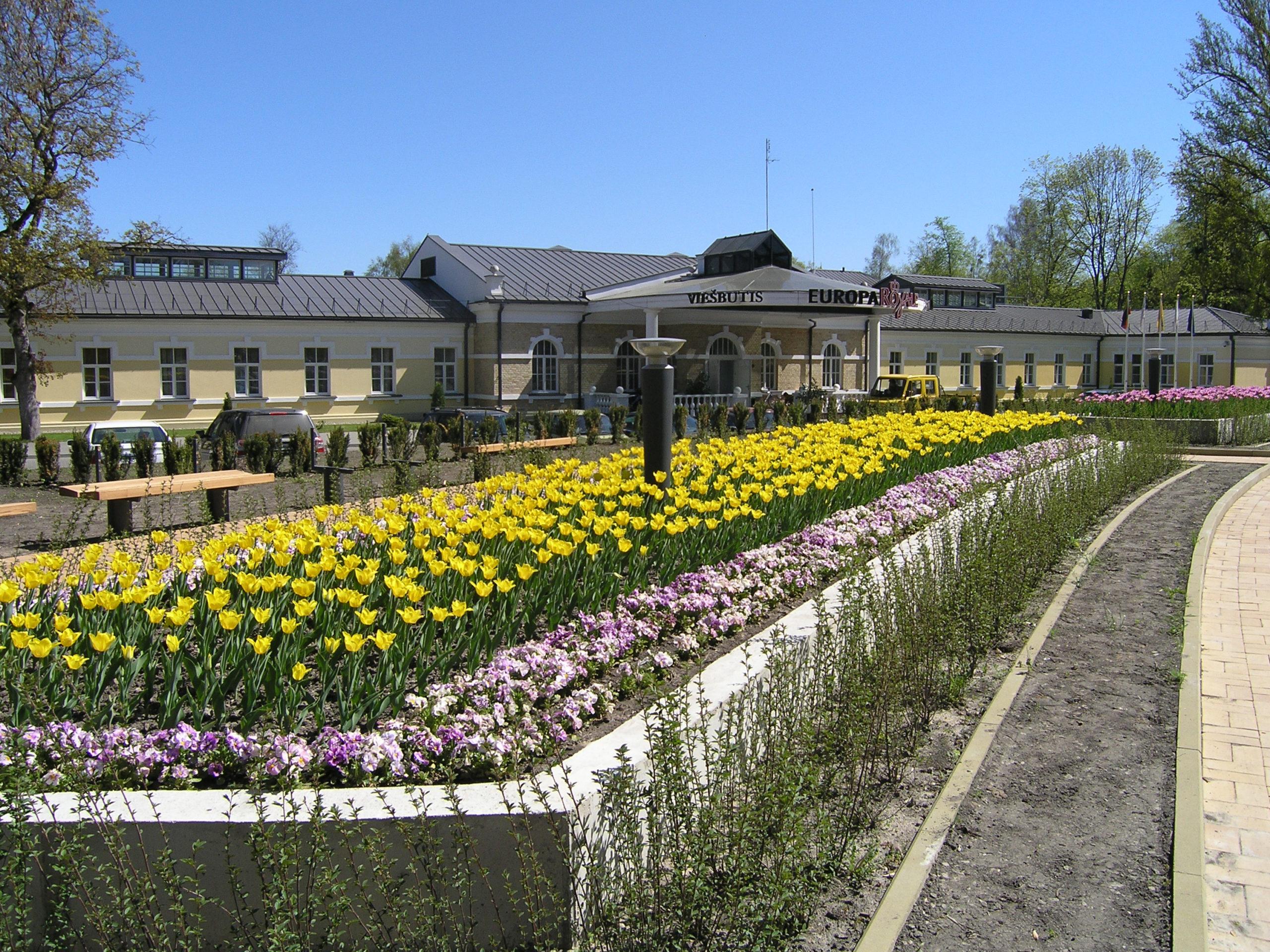 Tulipany i budynek