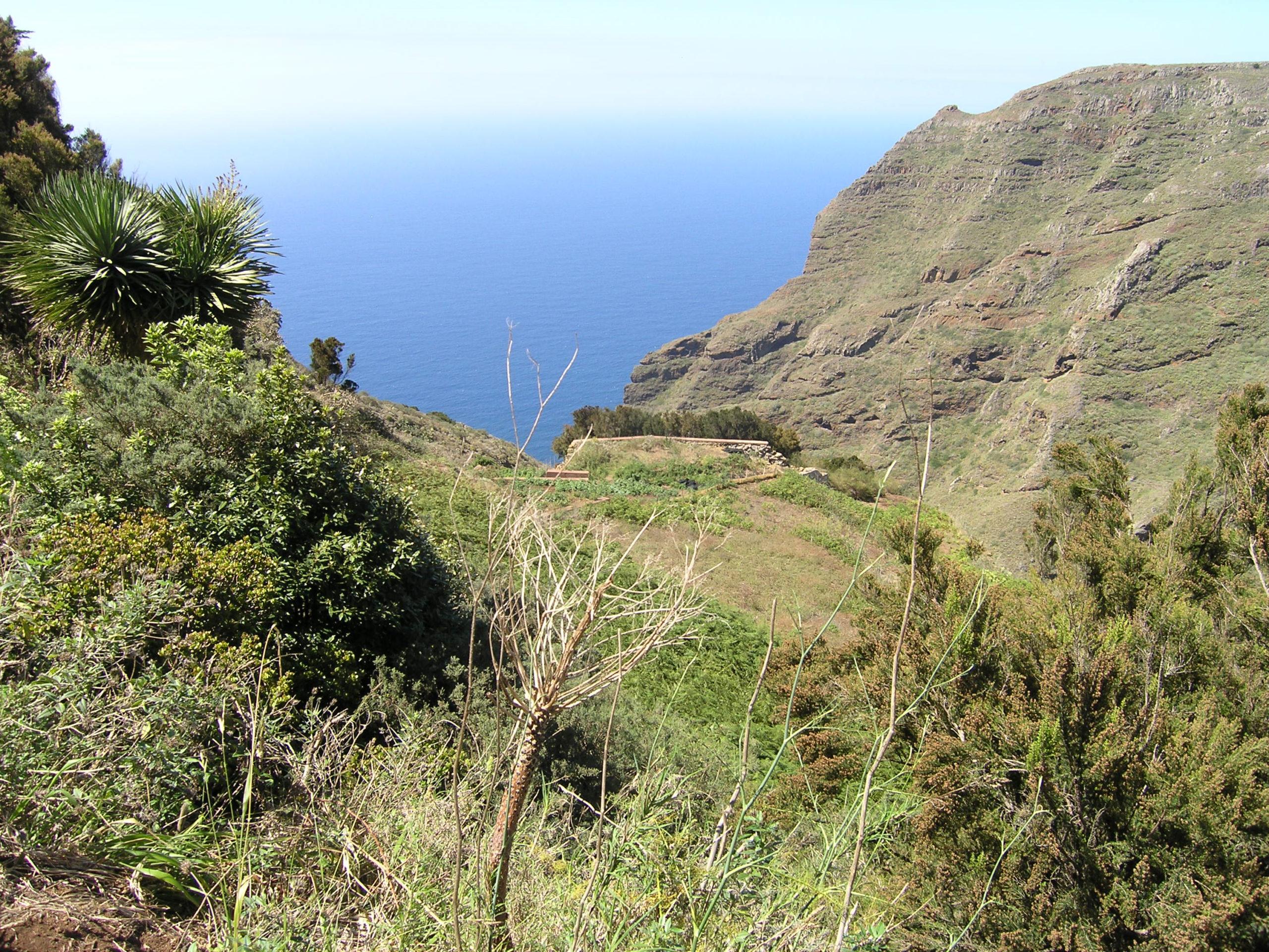 Widok na góry i morze