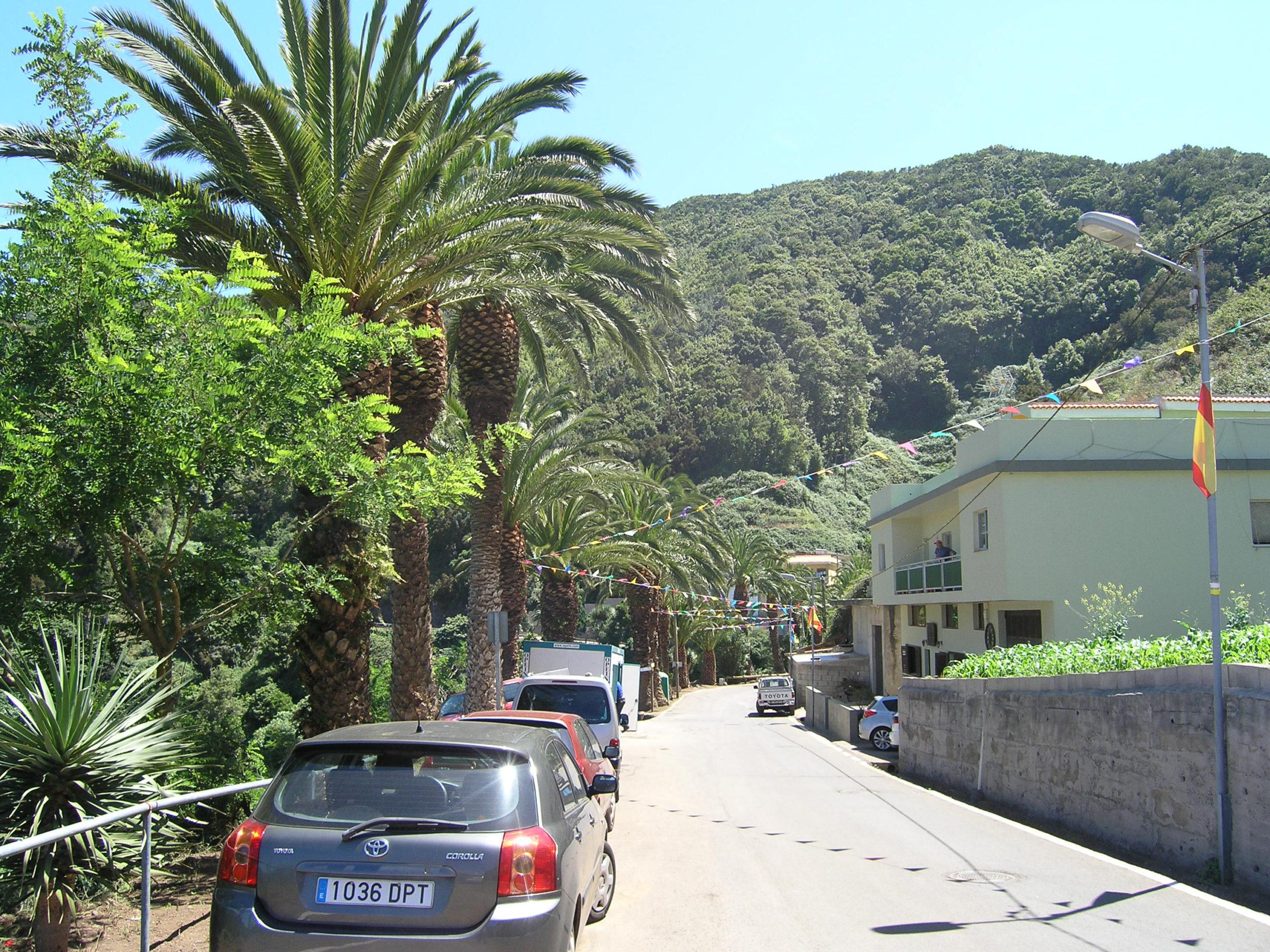 Widok na drogę samochody i góry