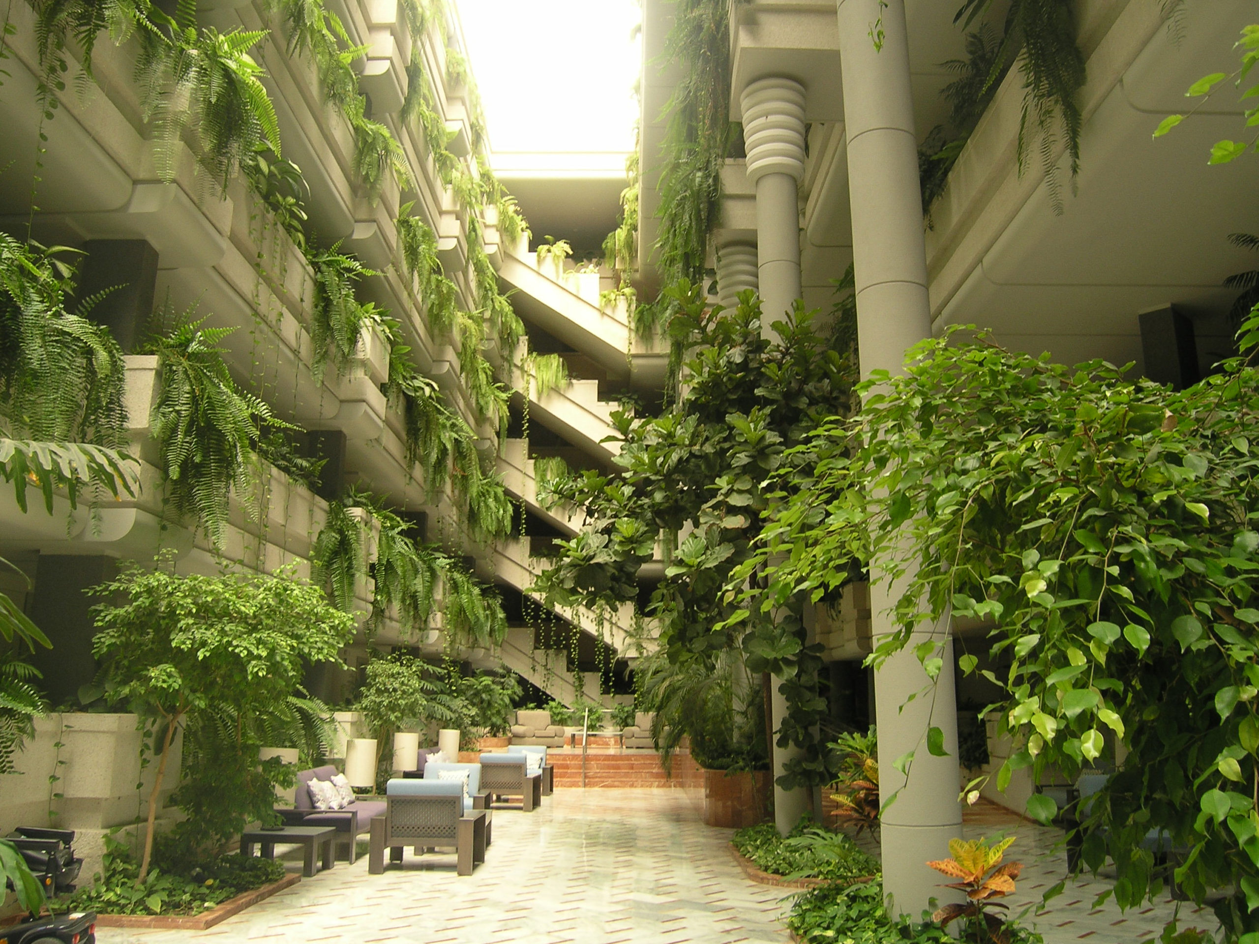 zielone wnętrze budynku