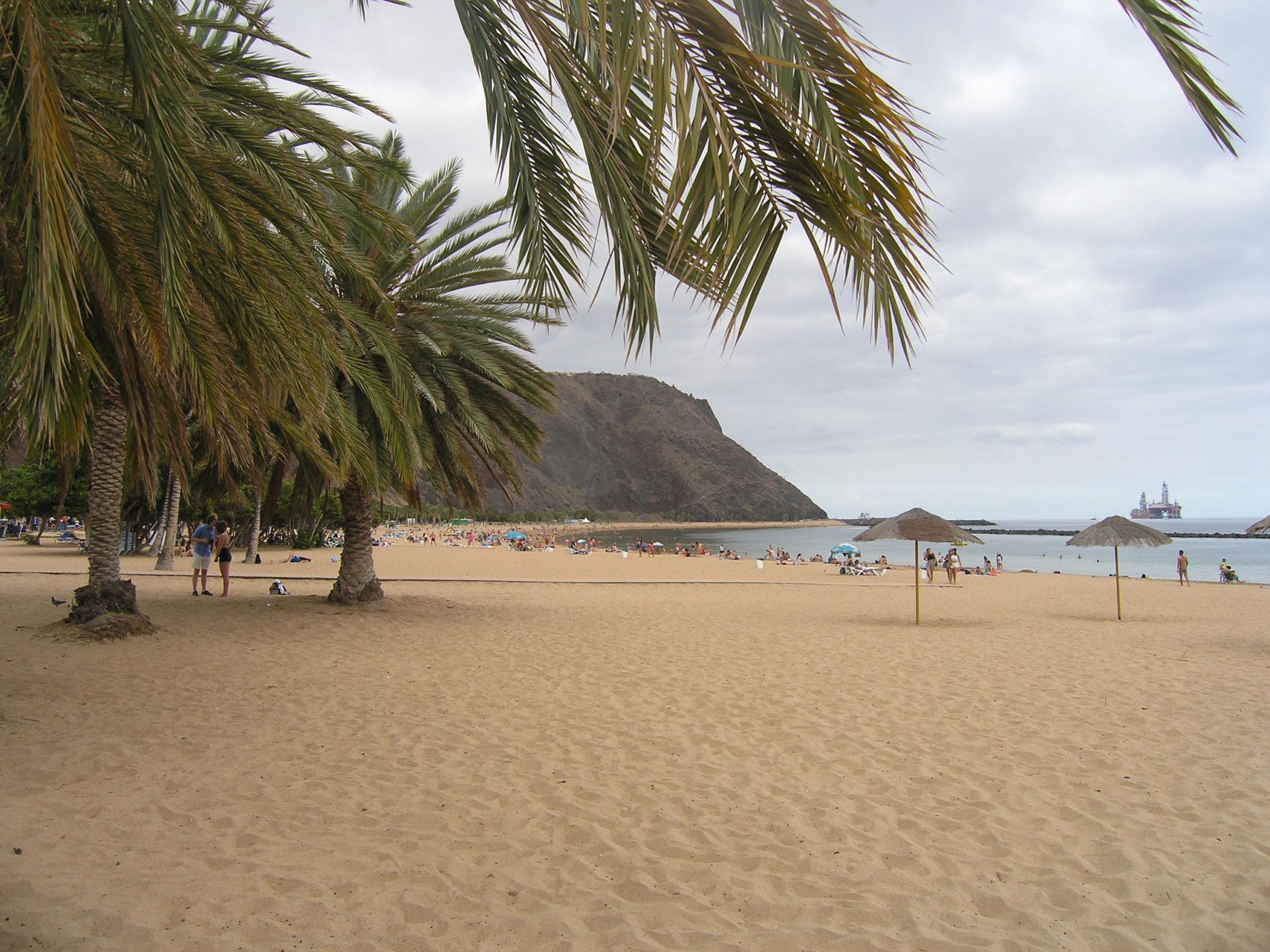 Plaża i widok na góry i Palmy