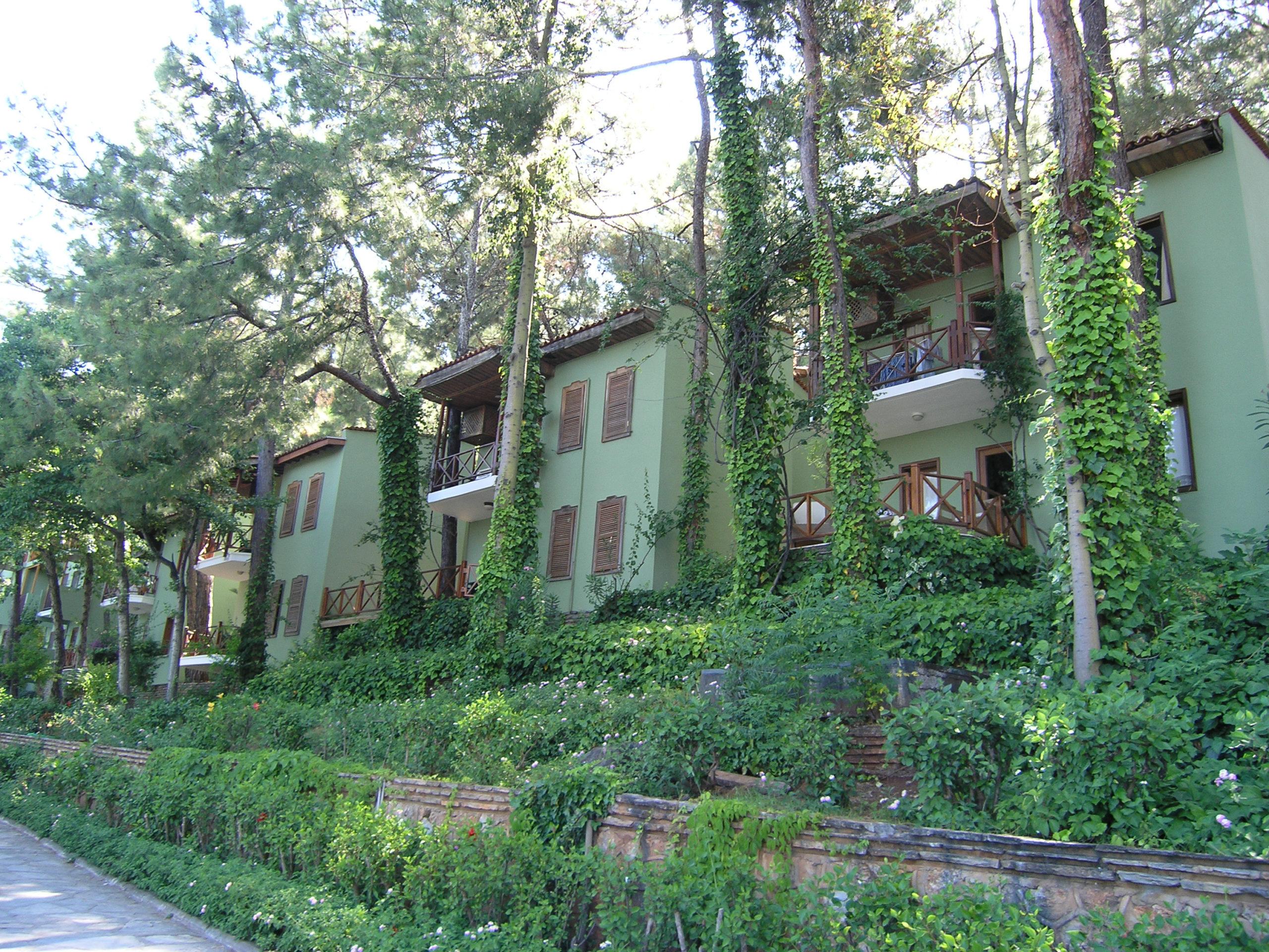 Zielone budynki i drzewa