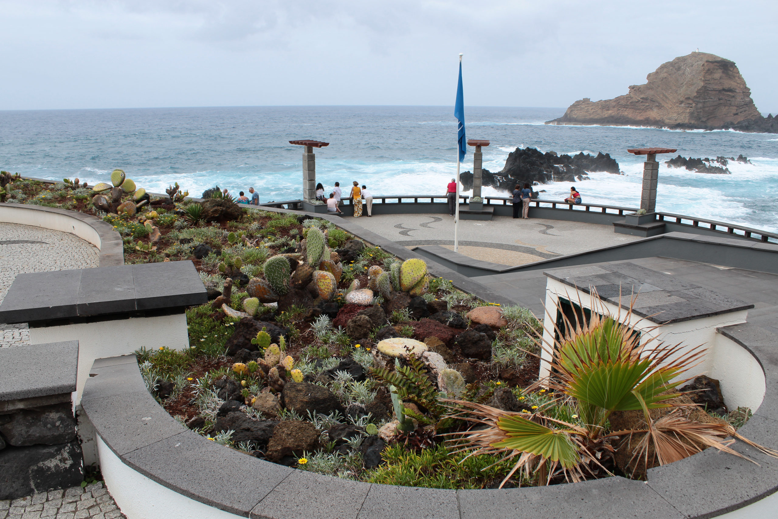 madera deptak przy oceanie i kaktusy