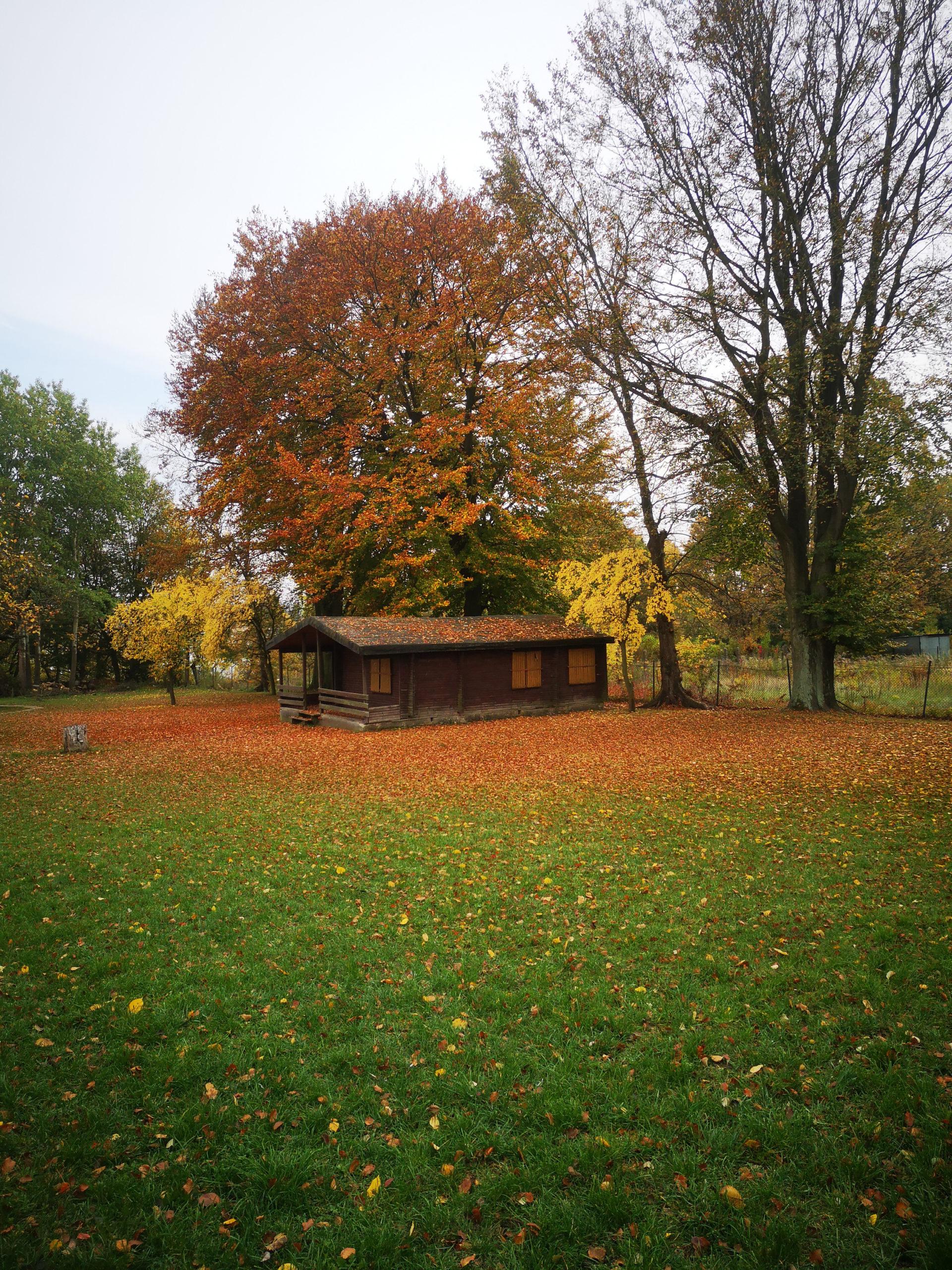 serock widok na domek letniskowy jesień