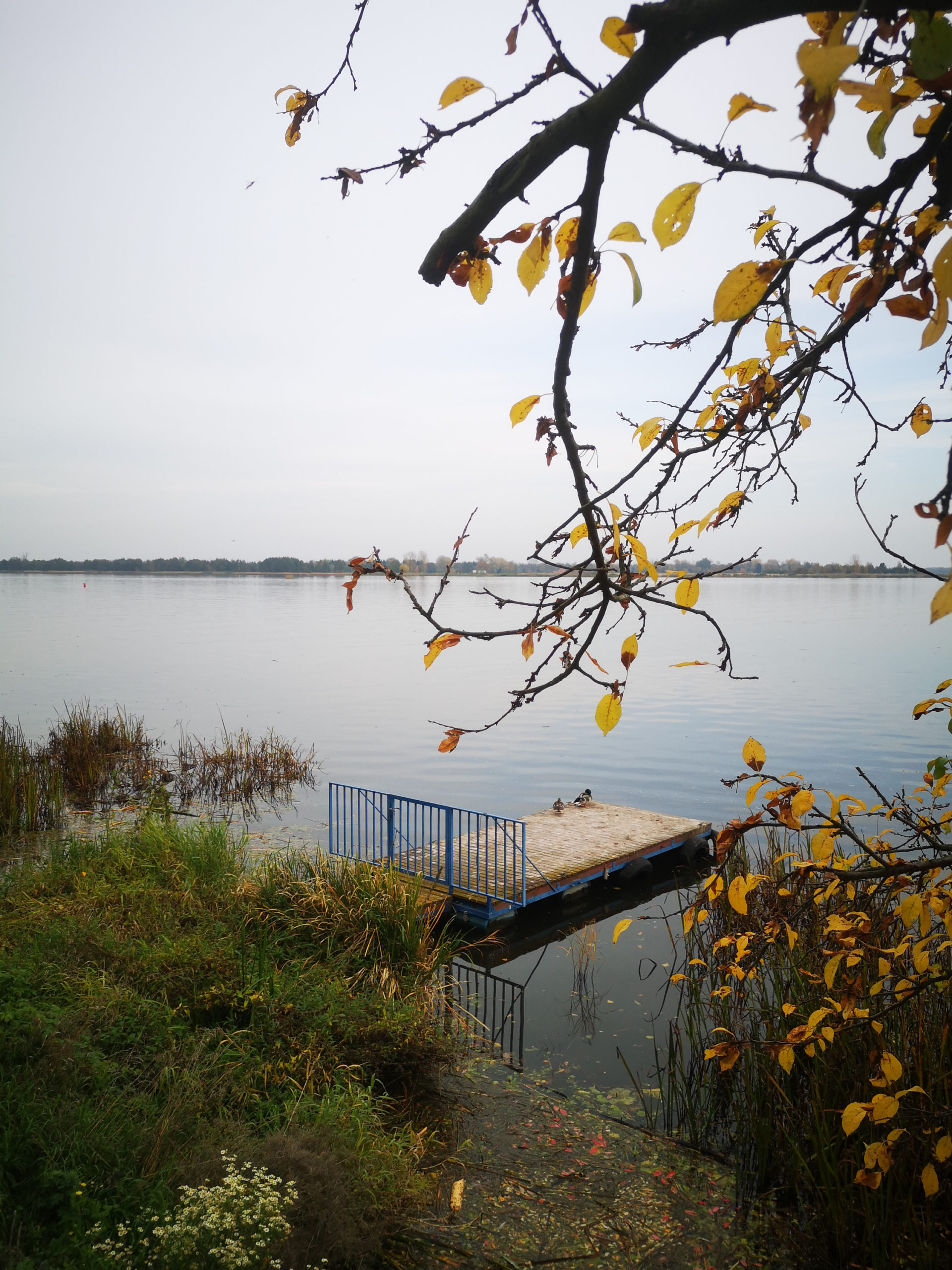 serock widok na jezioro i pomost