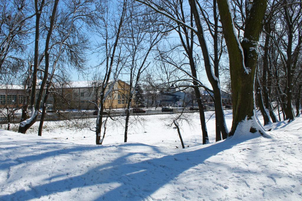 budynki za parkiem zimą