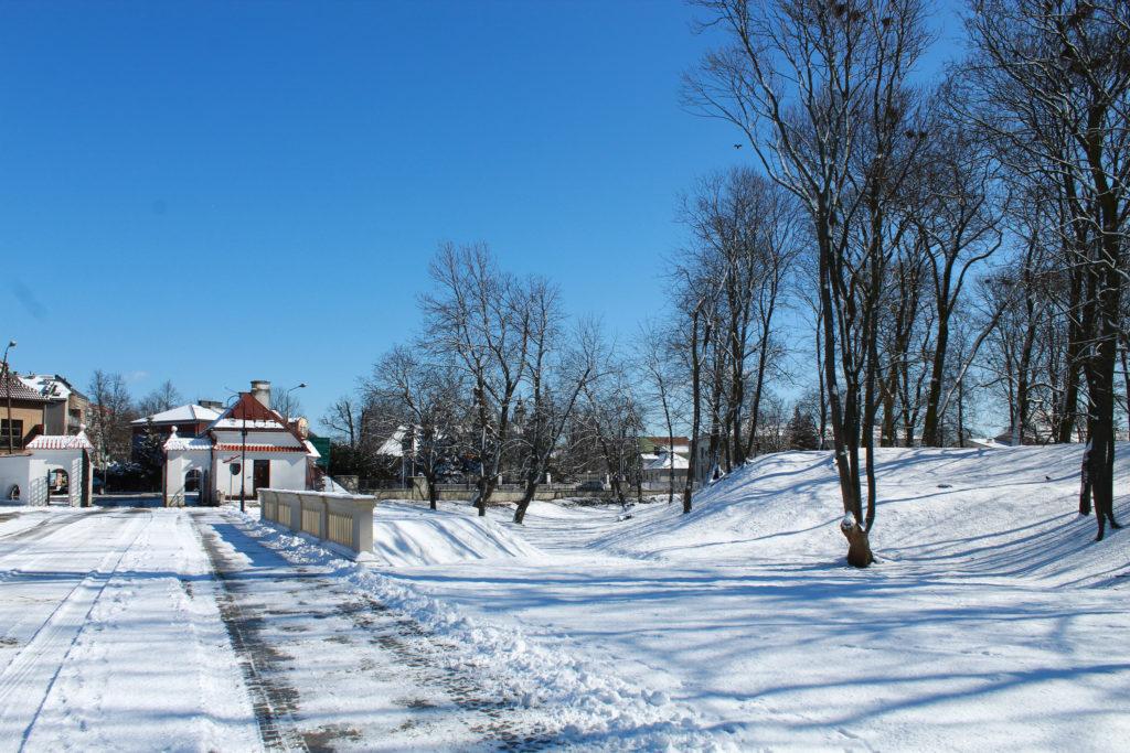widok na park zimą