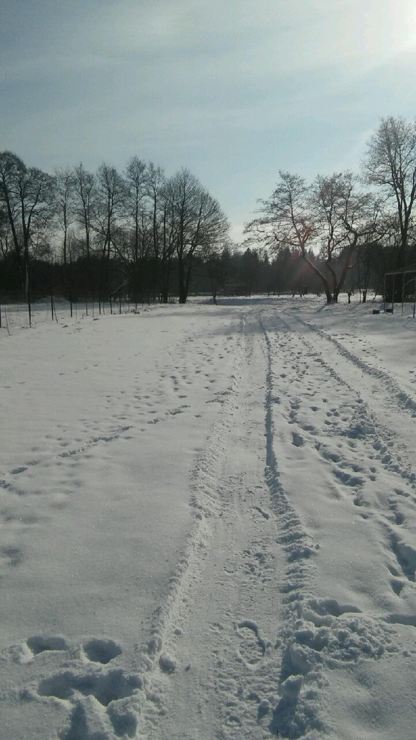 ścieżka piesza w śniegu