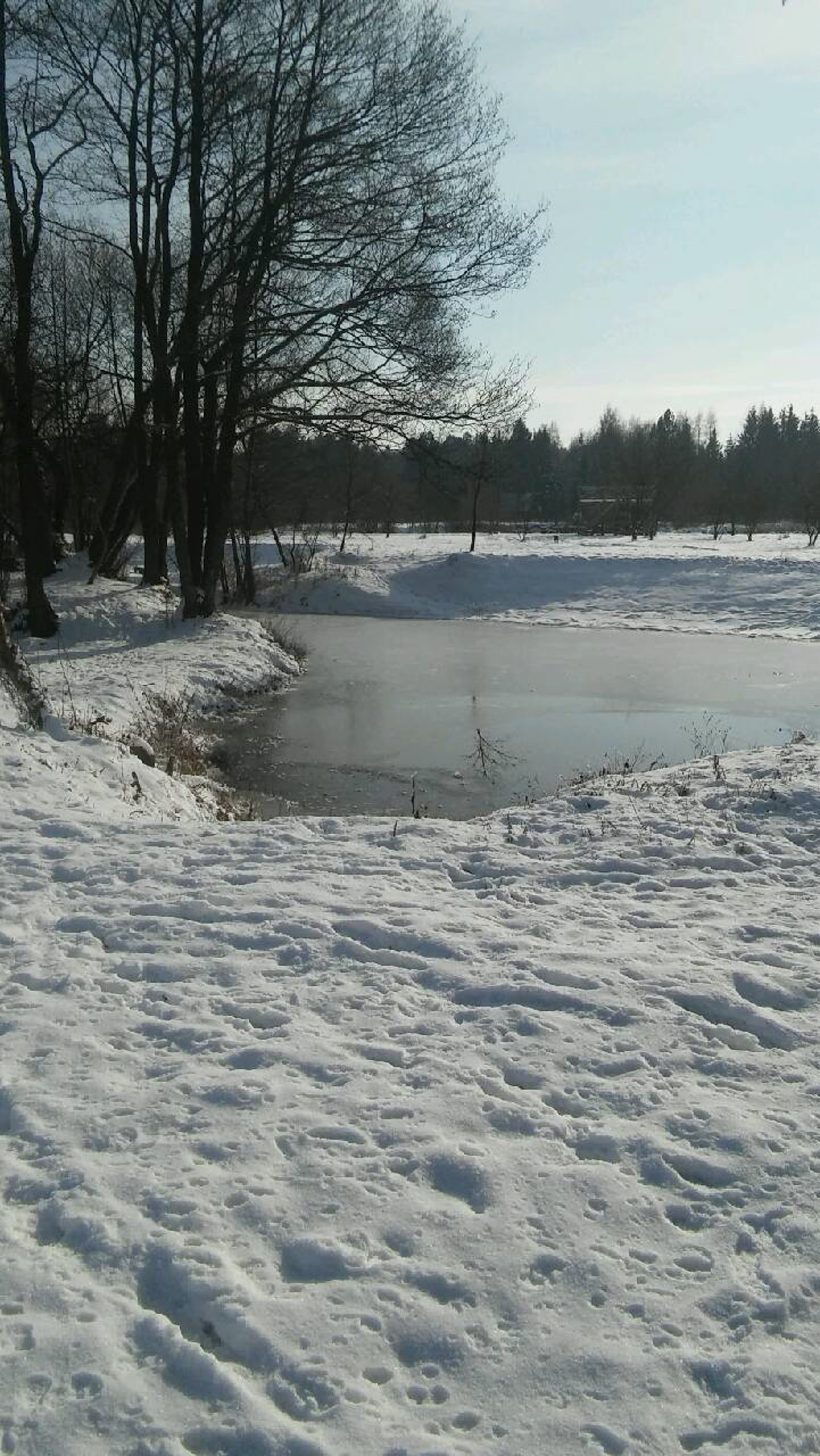 widok na zamarzniętą wodę