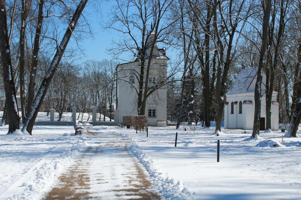 budynki w parku zimą