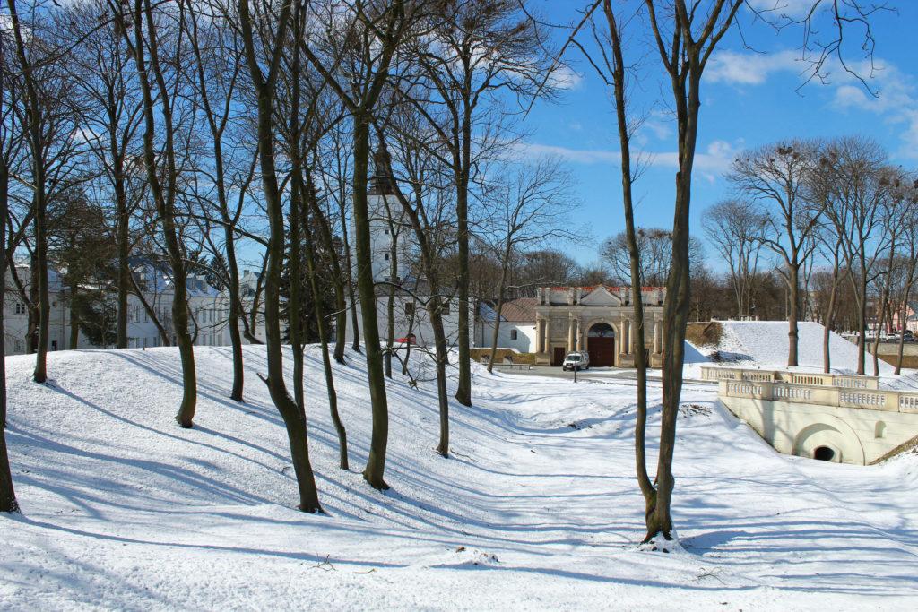 widok na park i budynki zimą