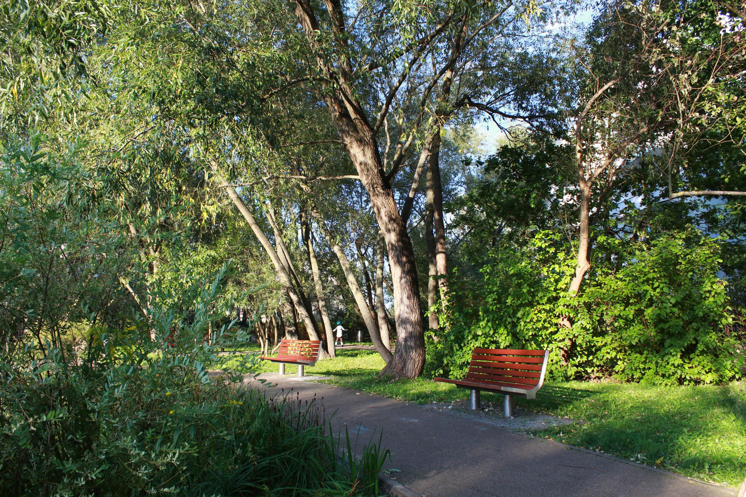 ławki przy ścieżce w parku