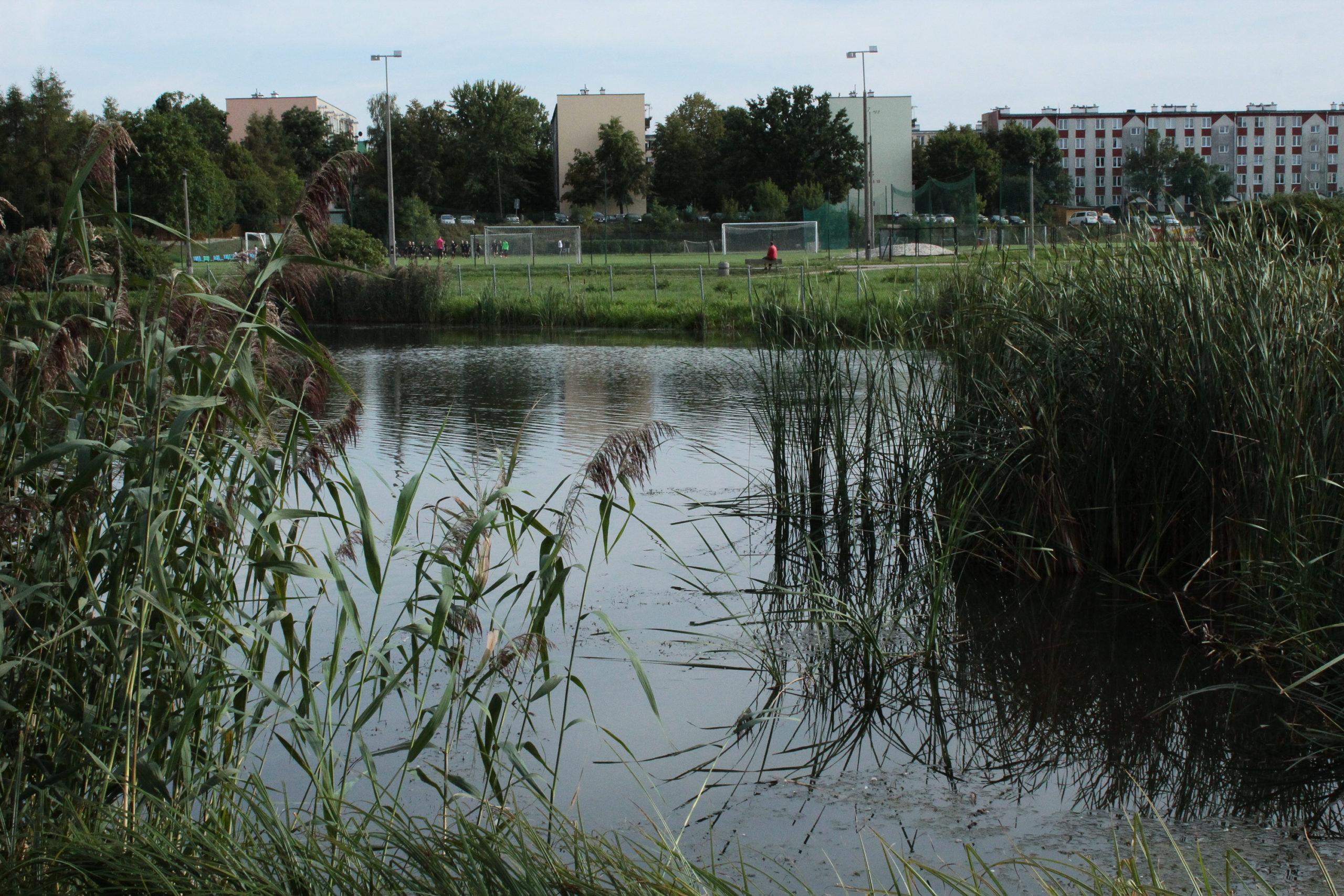 widok na jeziorko w tle orlik i osiedle