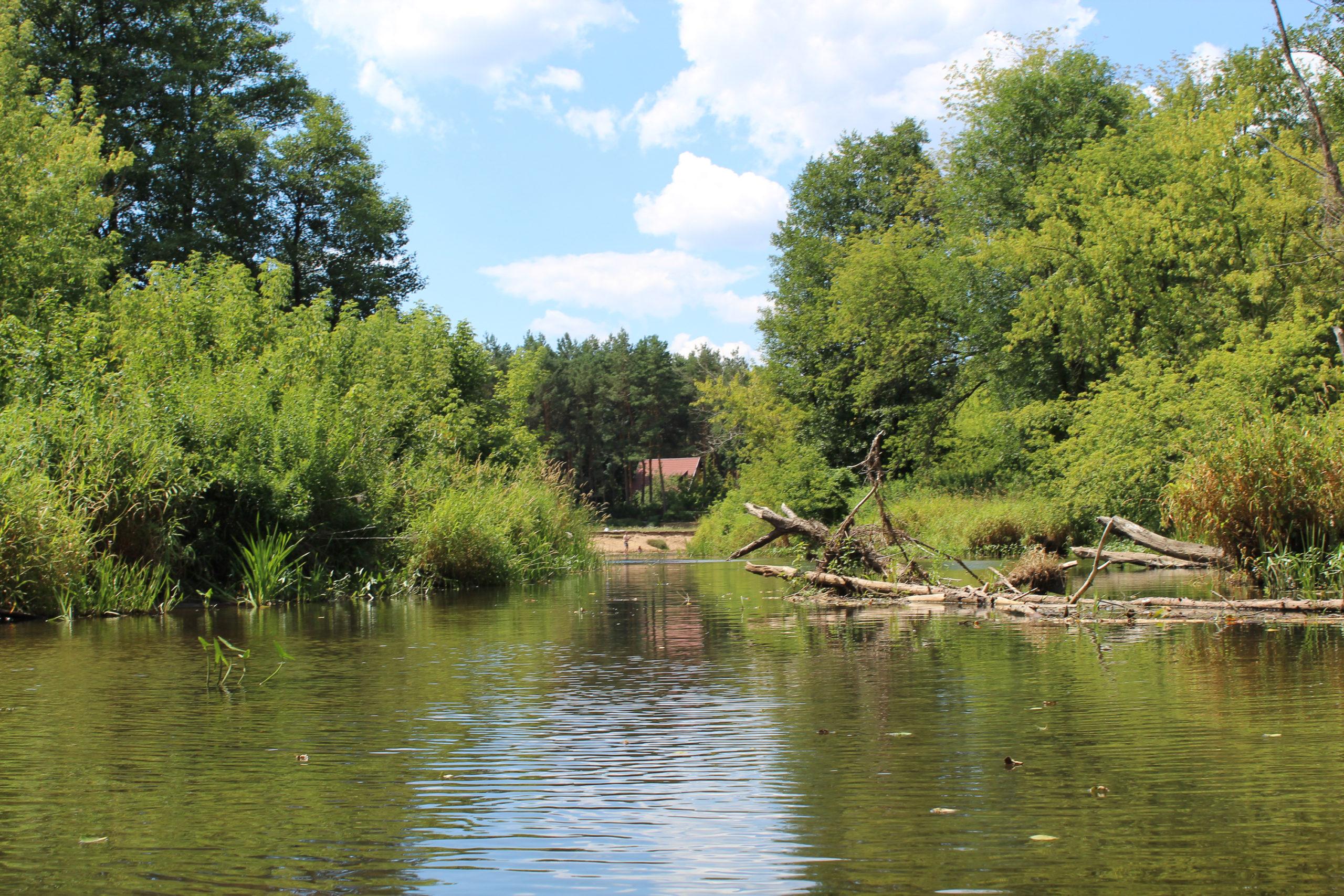 szeroka rzeka