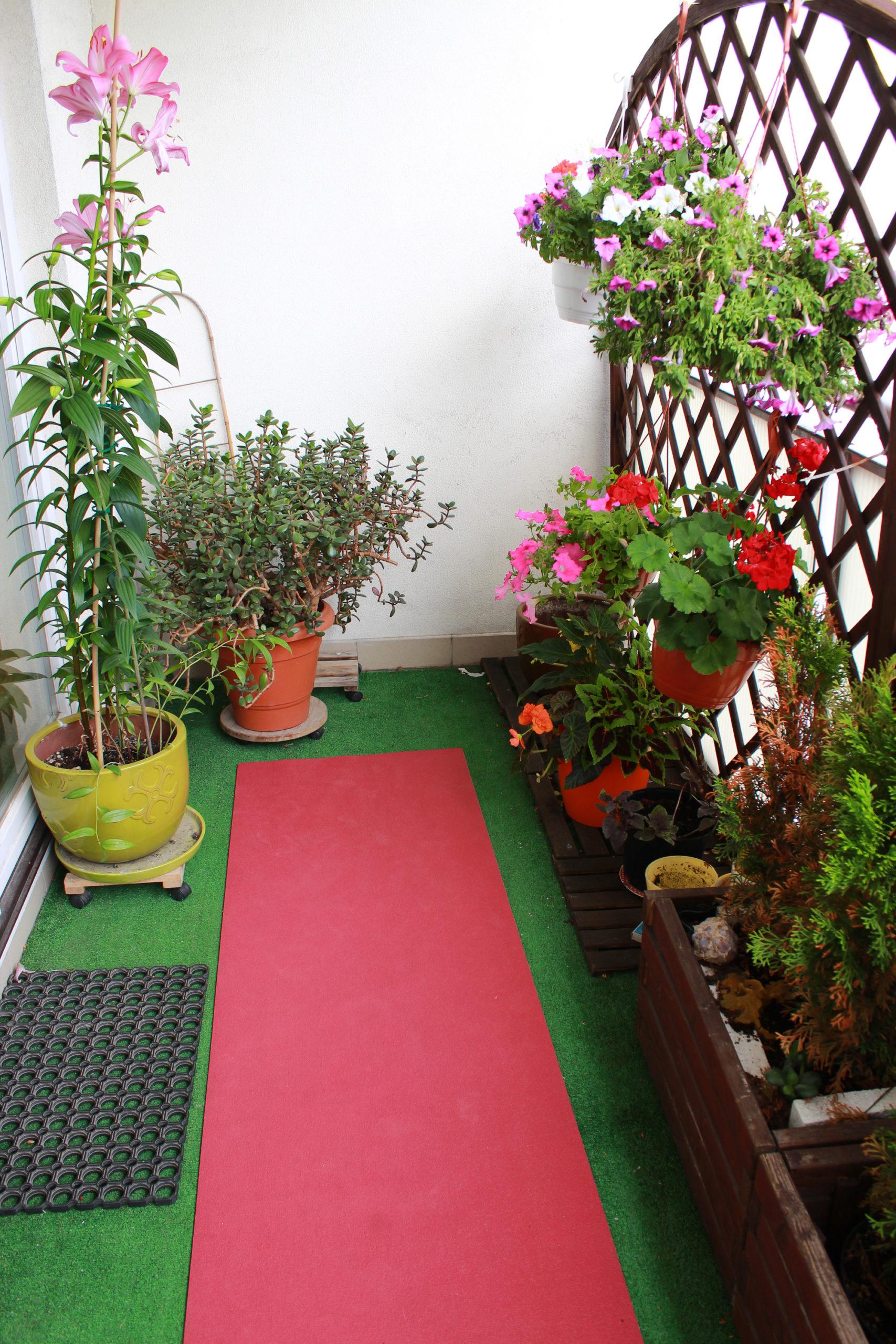 balkon z kwiatami w doniczkach