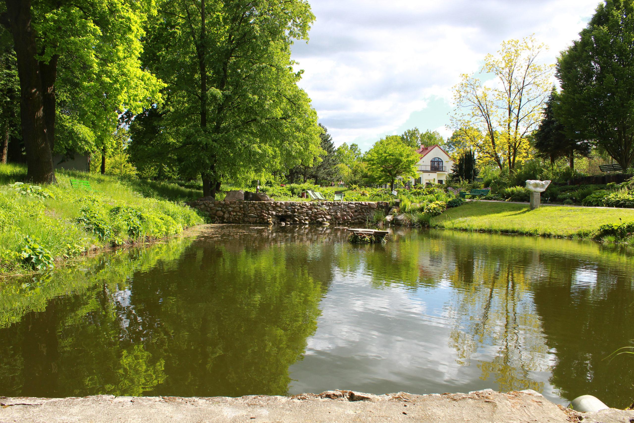 zbiornik wodny wśród zieleni
