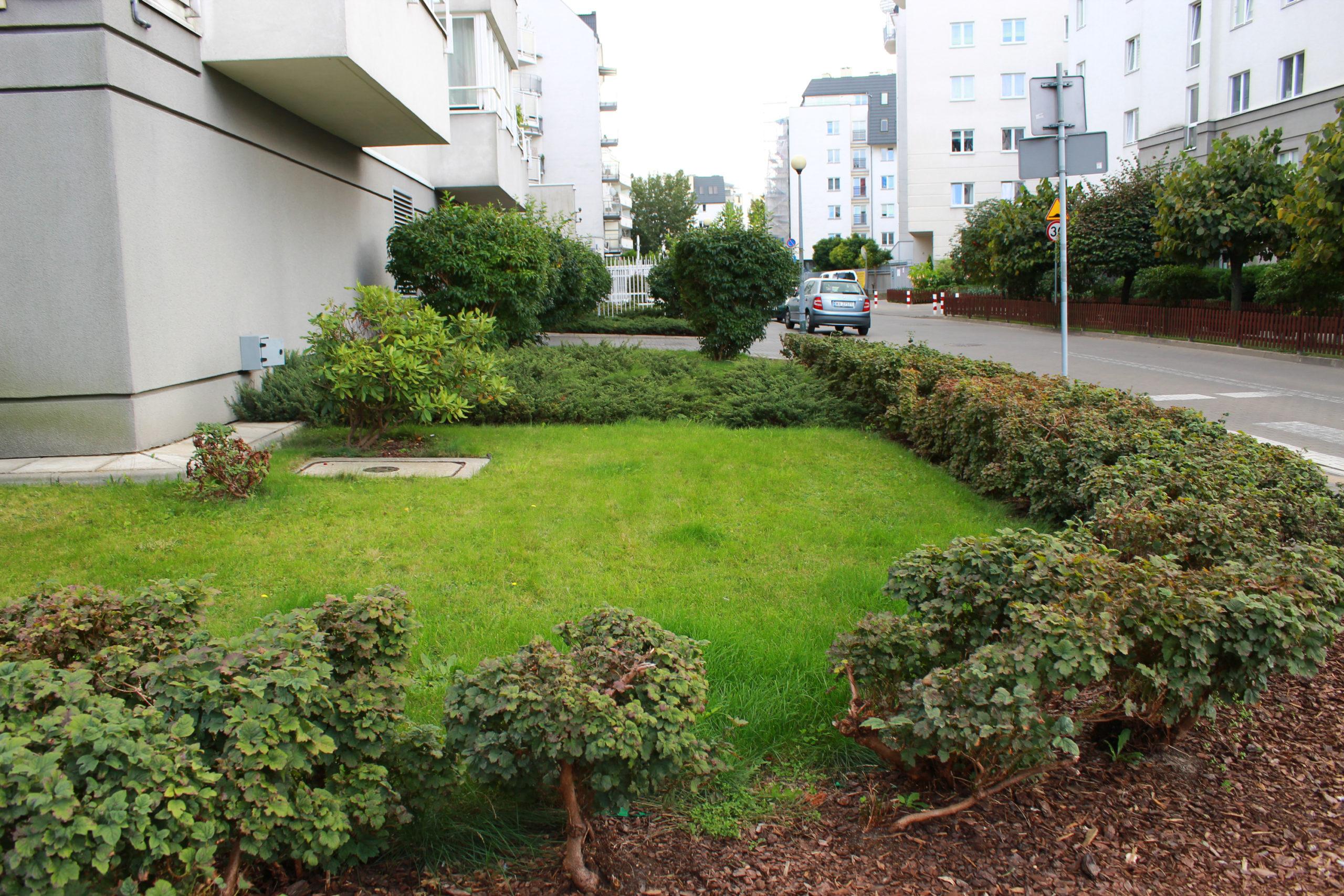 miejski ogródek przy budynku