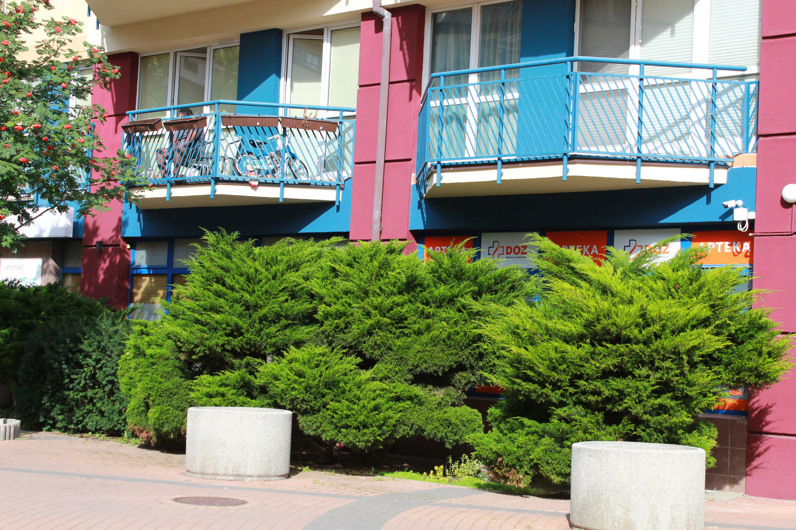 zieleń pod balkonami