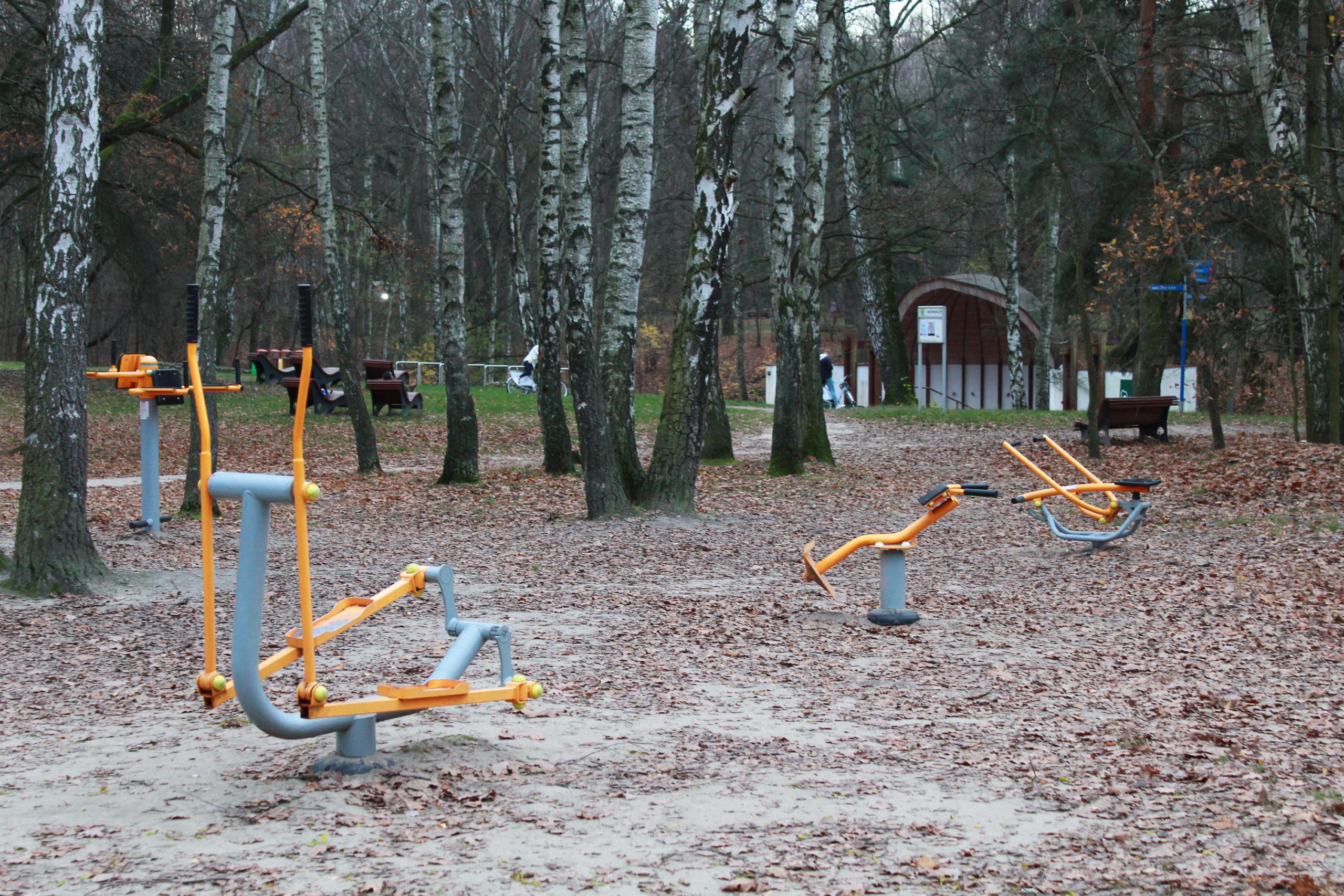 siłownia plenerowa wśród drzew