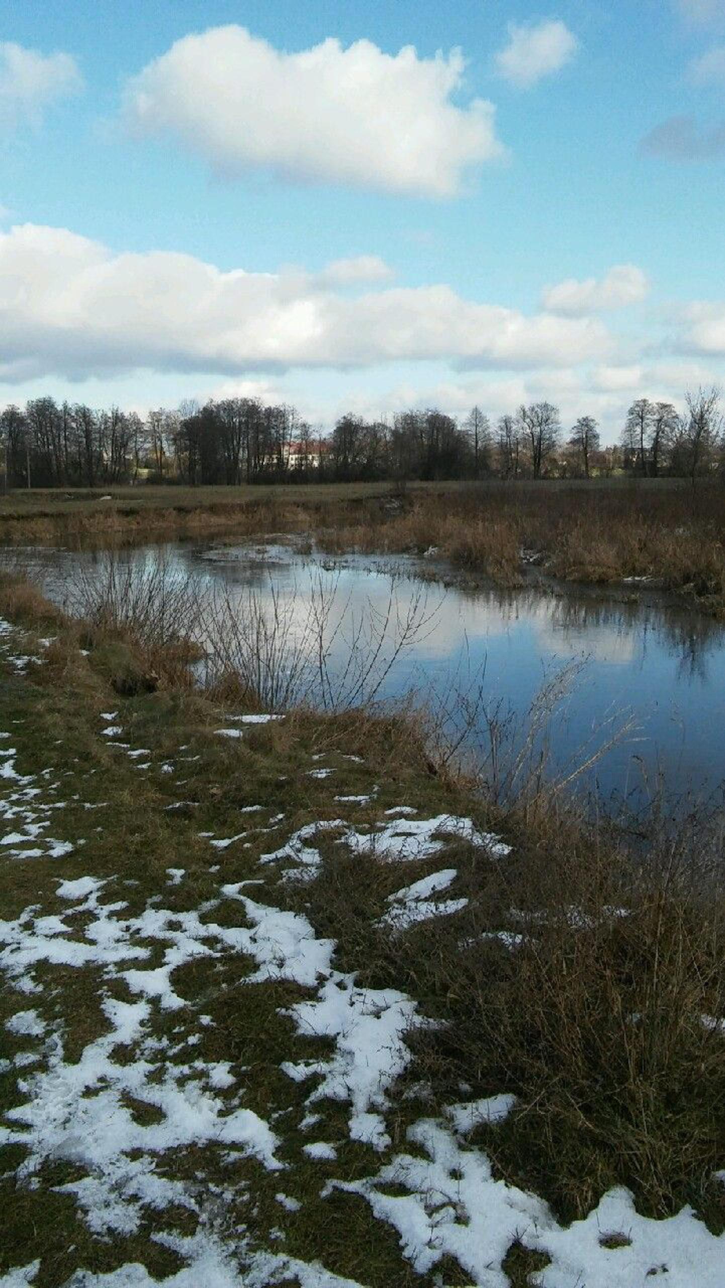 widok na wodę i resztki śniegu w trawie