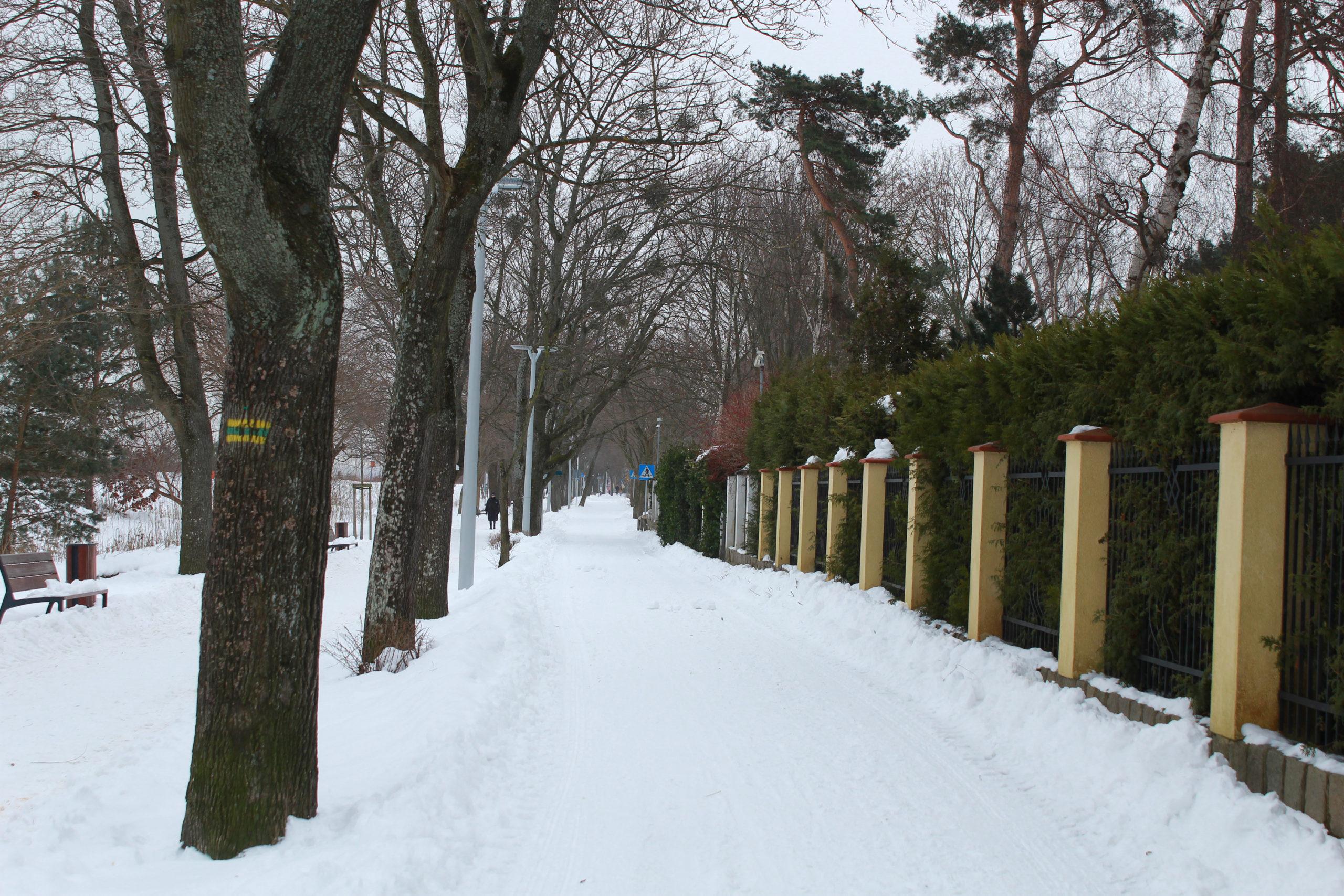 zaśnieżona ulica i żółty płot