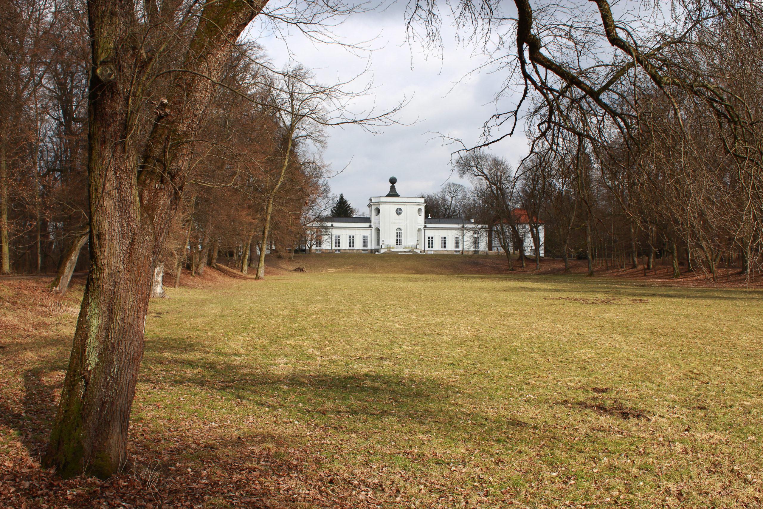 widok na pałac w parku