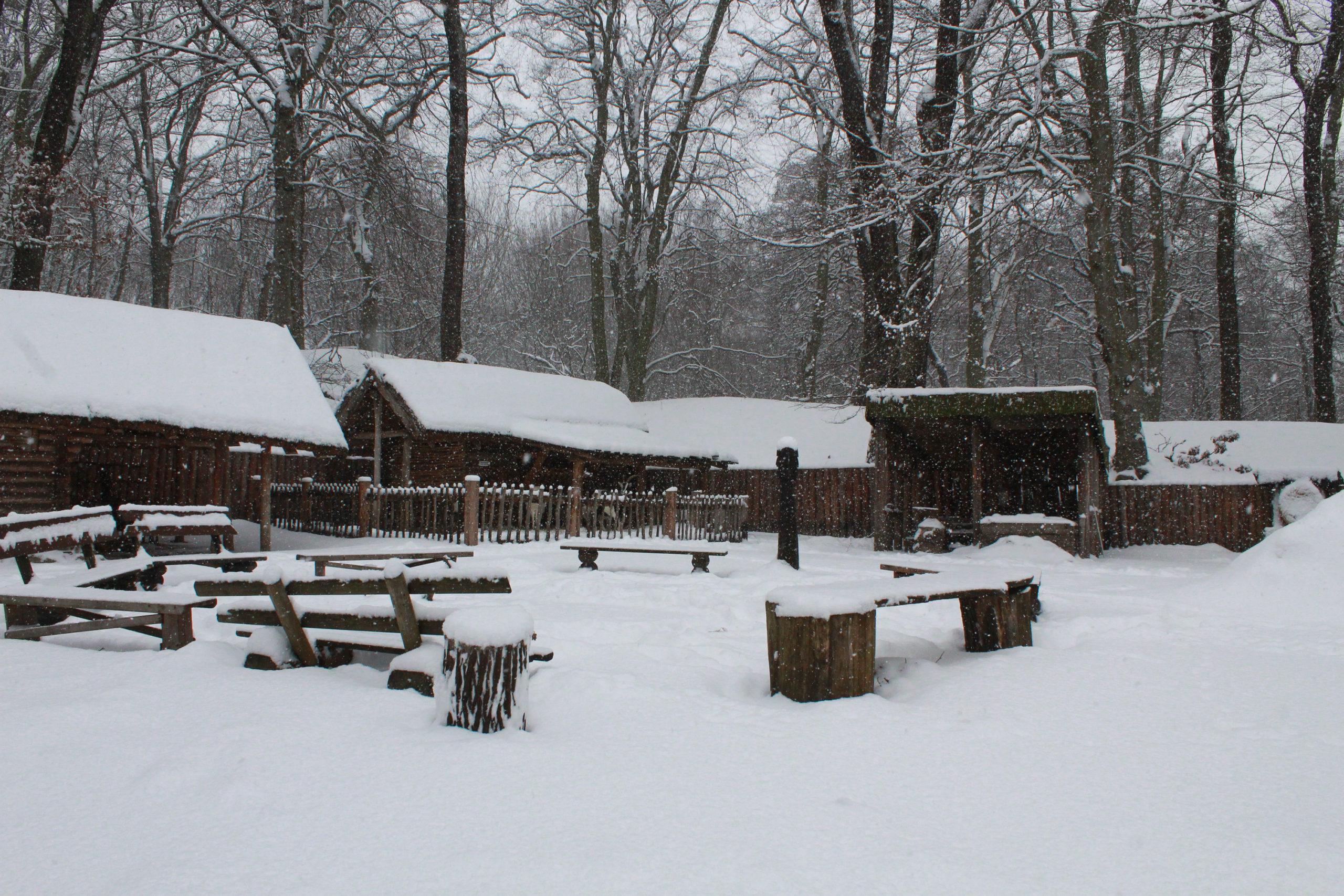 widok na zaśnieżone ławki i altany